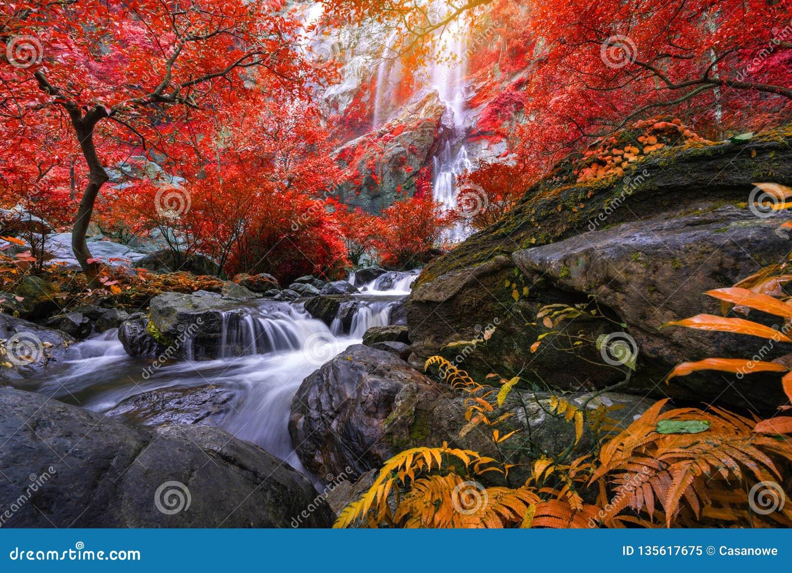 Khlong Lan siklawa jest piękne siklawy w las tropikalny dżungli Tajlandia