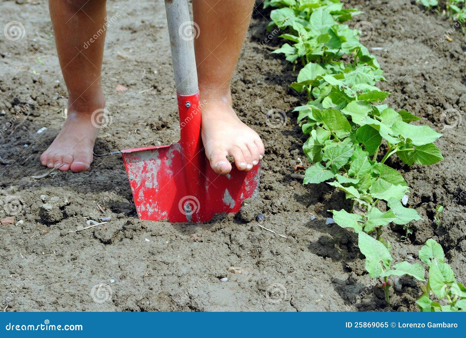 Kid Feet Kid feet over a shovel in the