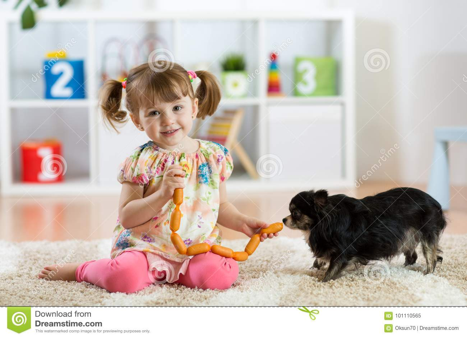 Kid girl feeds dog on floor in room