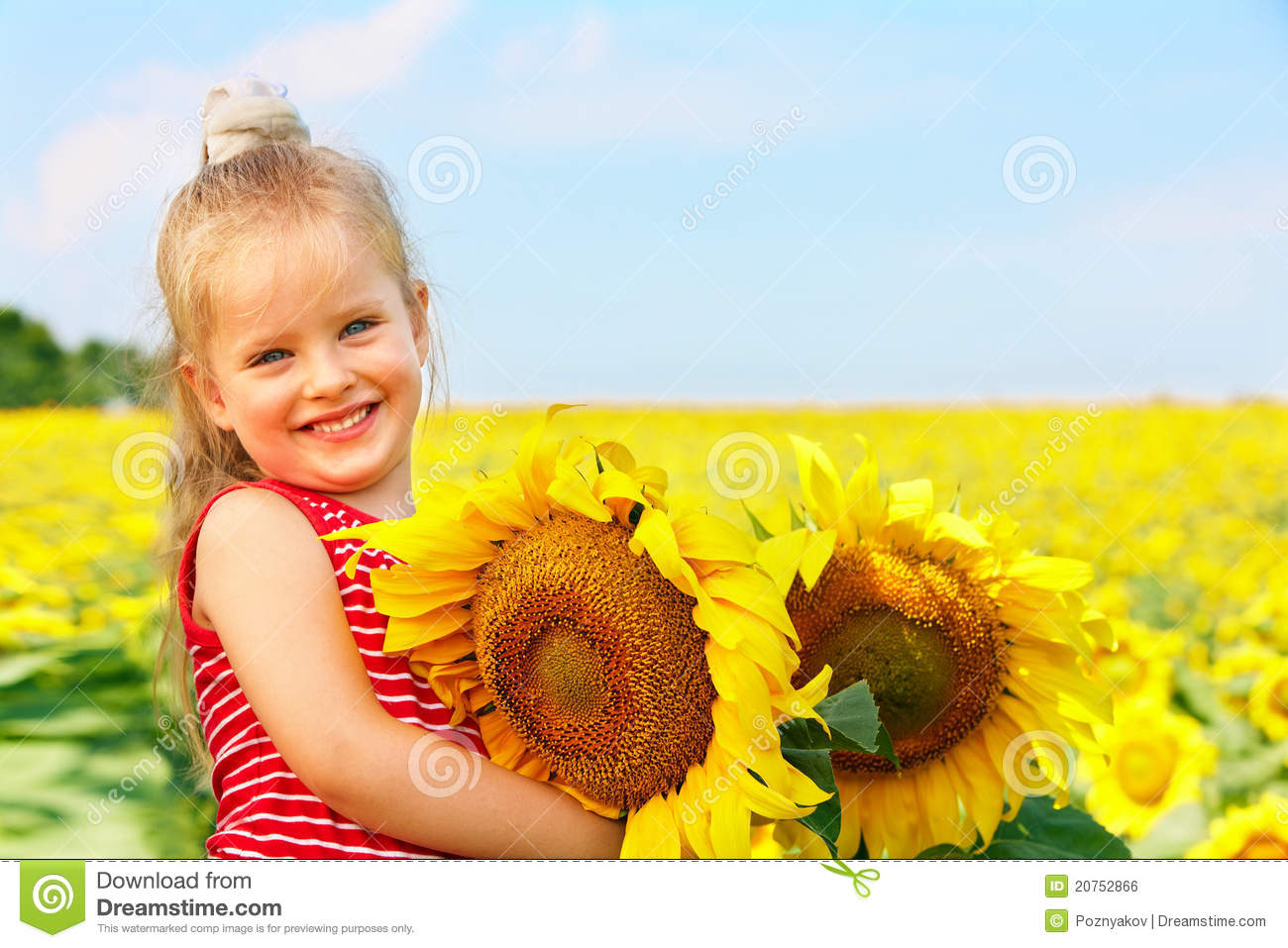 kid holding sunflower outdoor  royalty free stock image