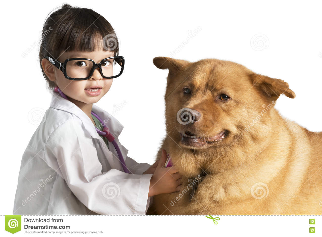 veterinar kid Kid playing veterinarian with dog