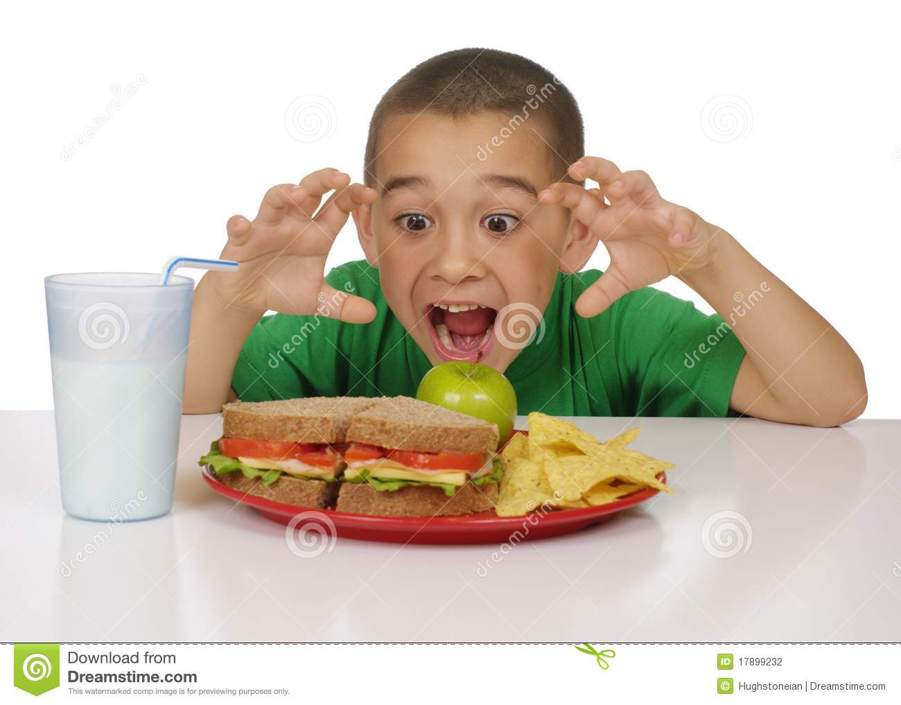Kid Ready To Eat A Sandwich Lunch Stock Photography