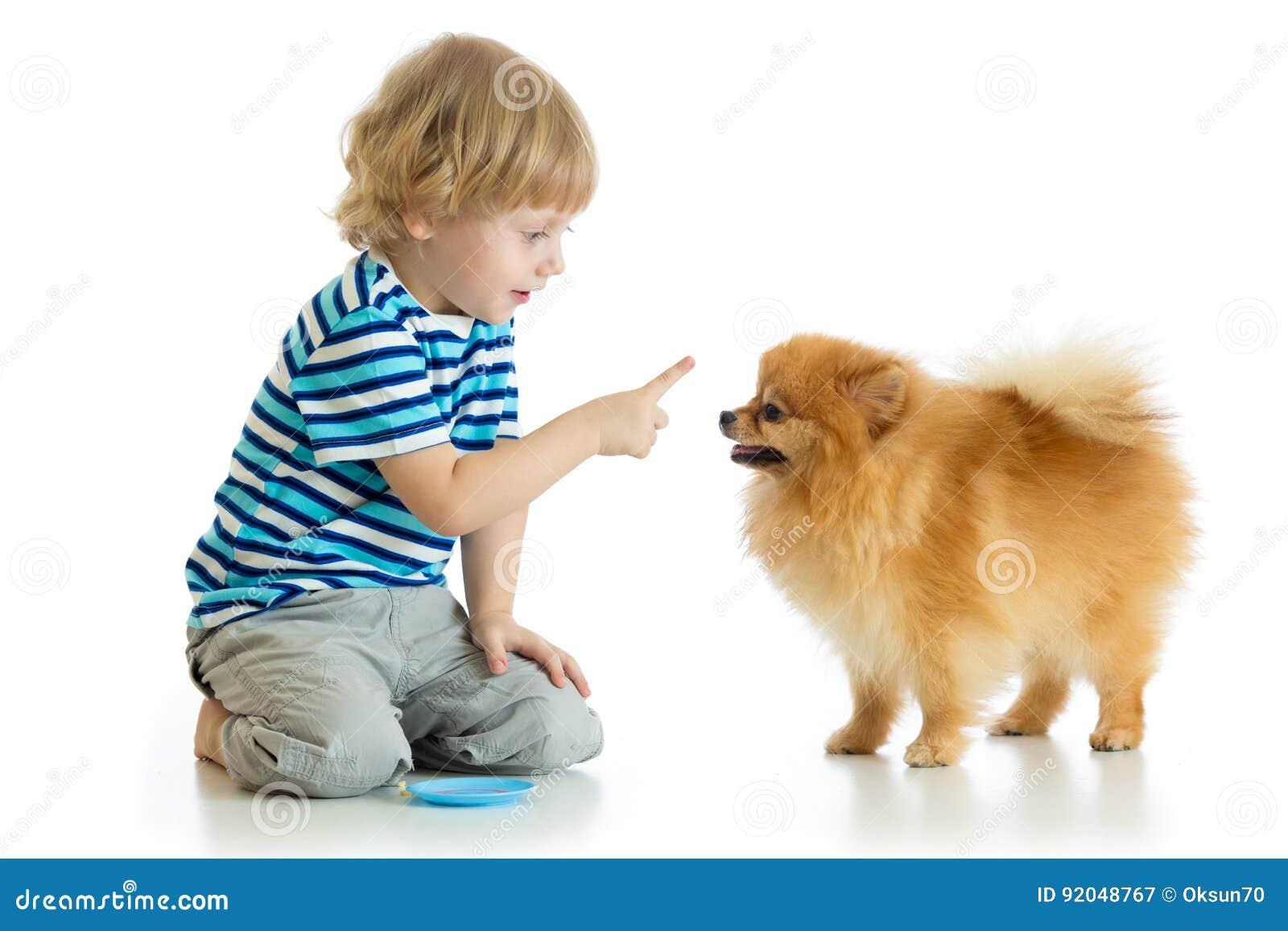 Kid training Spitz dog. Isolated on white background.