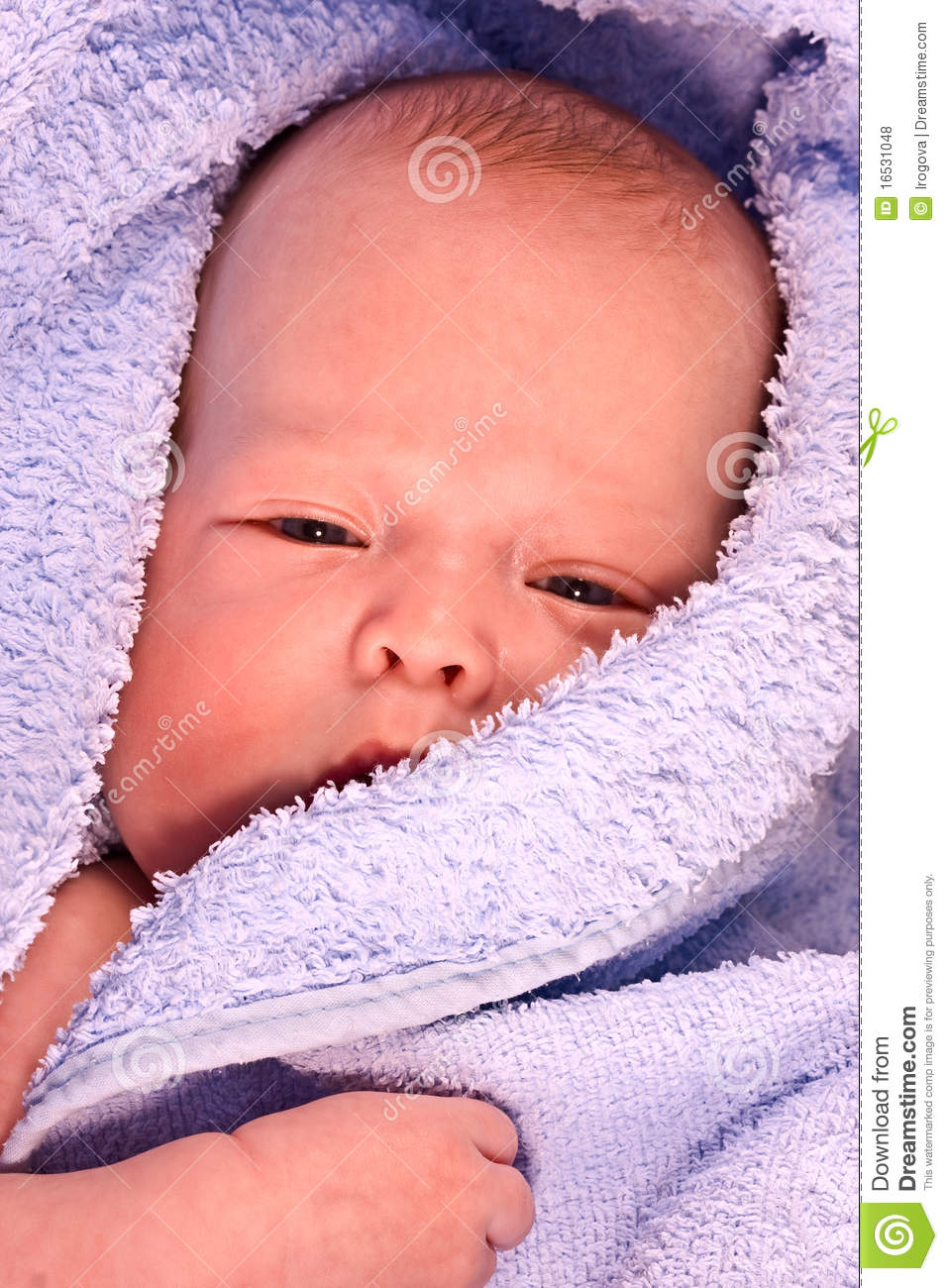 The Kid Who Has Been Wrapped Royalty Free Stock Photos