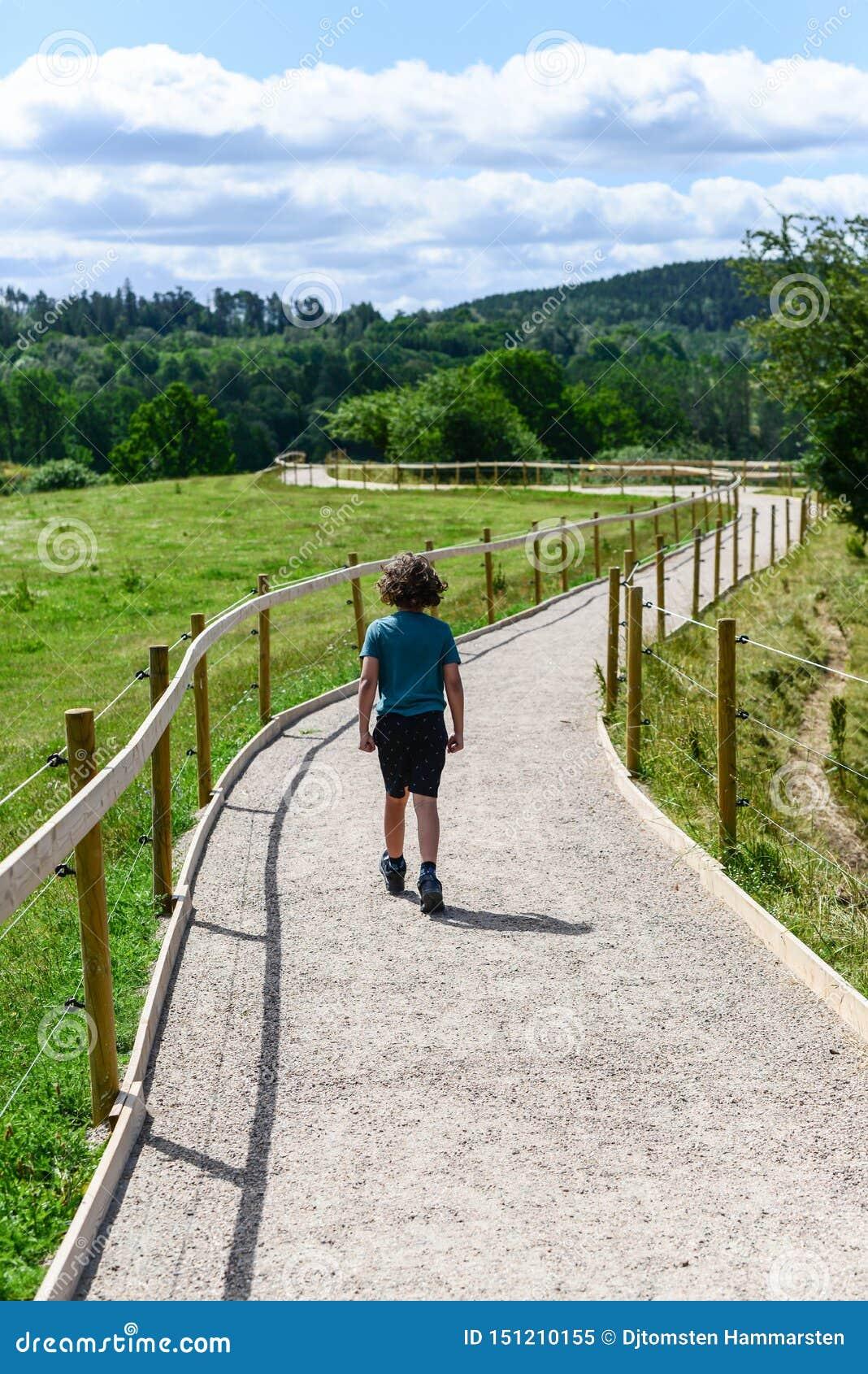 Kide Erhalten Trauriges In Das Holz Weg Gehen Stockbild