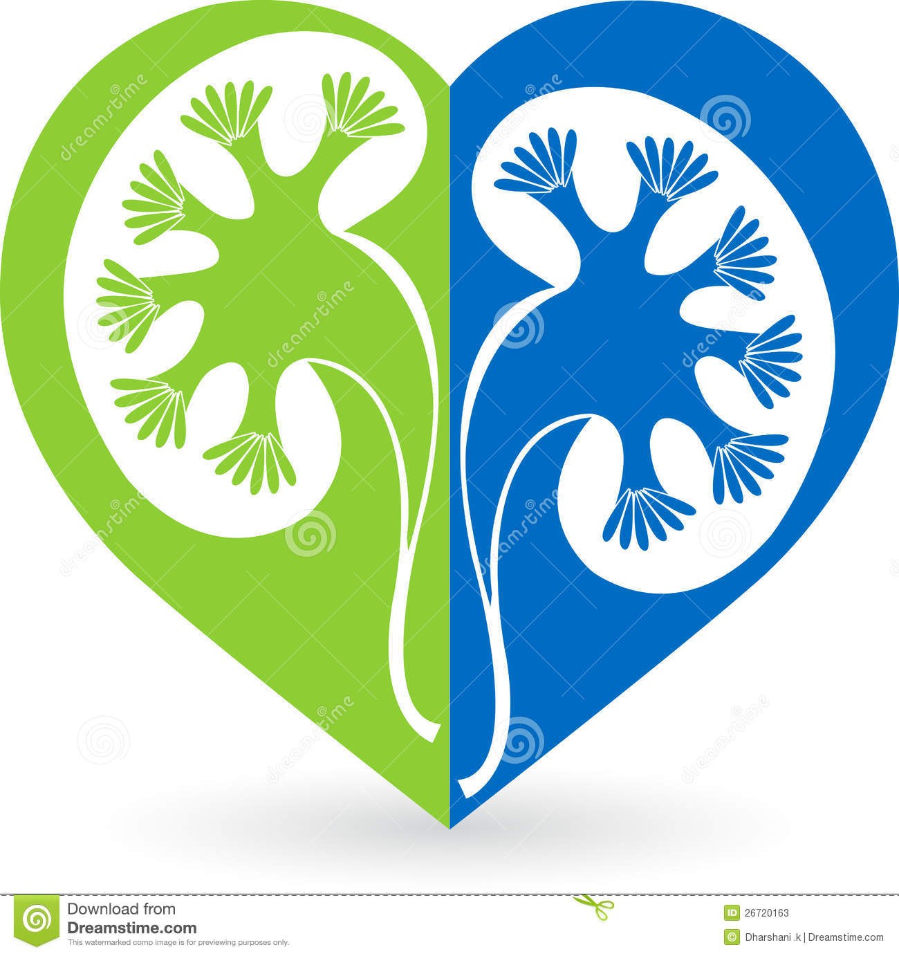 Illustration art of a love shape kidney logo with isolated background.