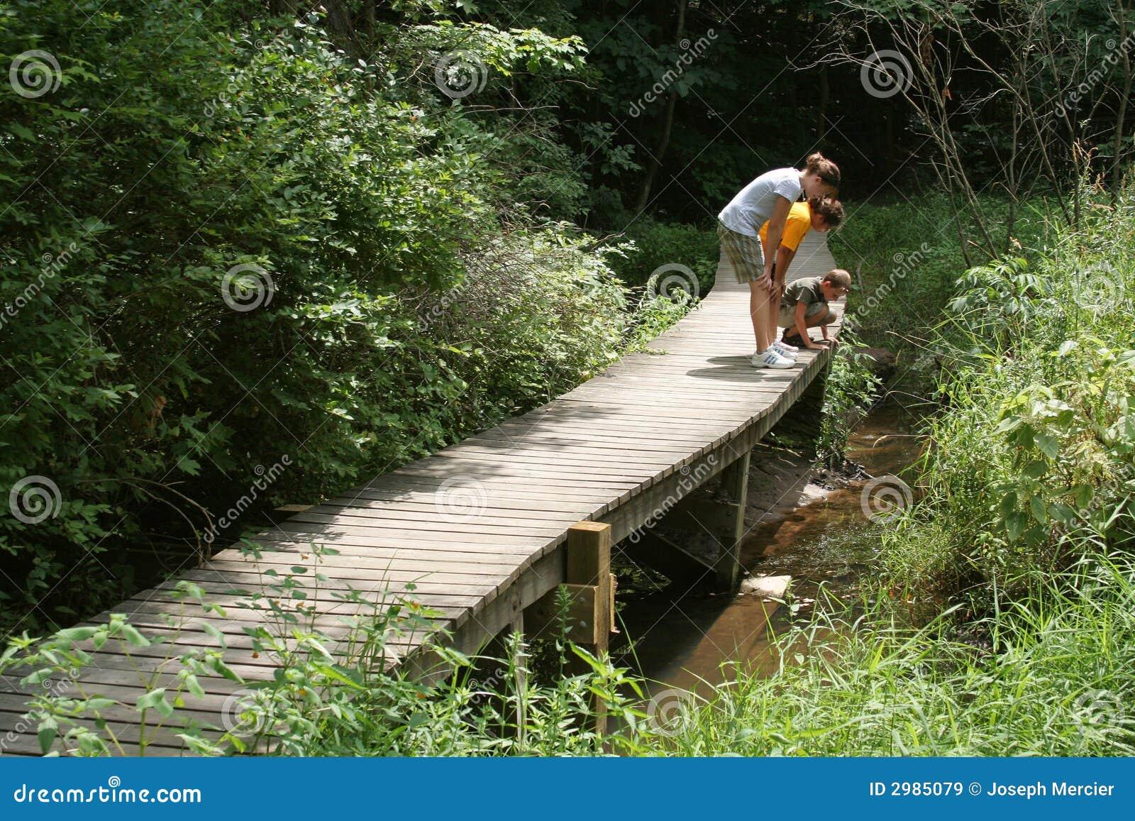 Kids Exploring Nature Trail