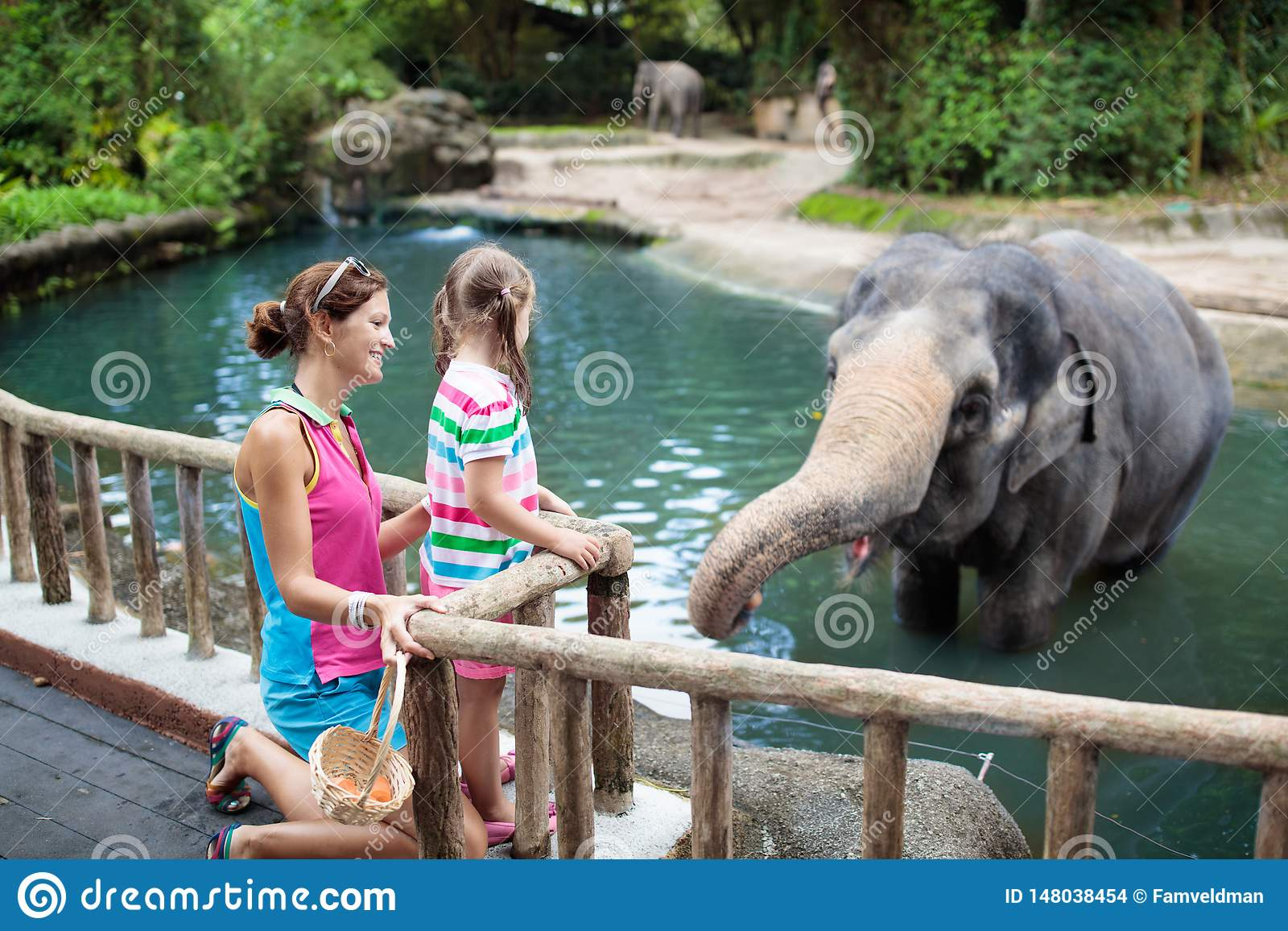 Kids feed elephant in zoo. Family at animal park