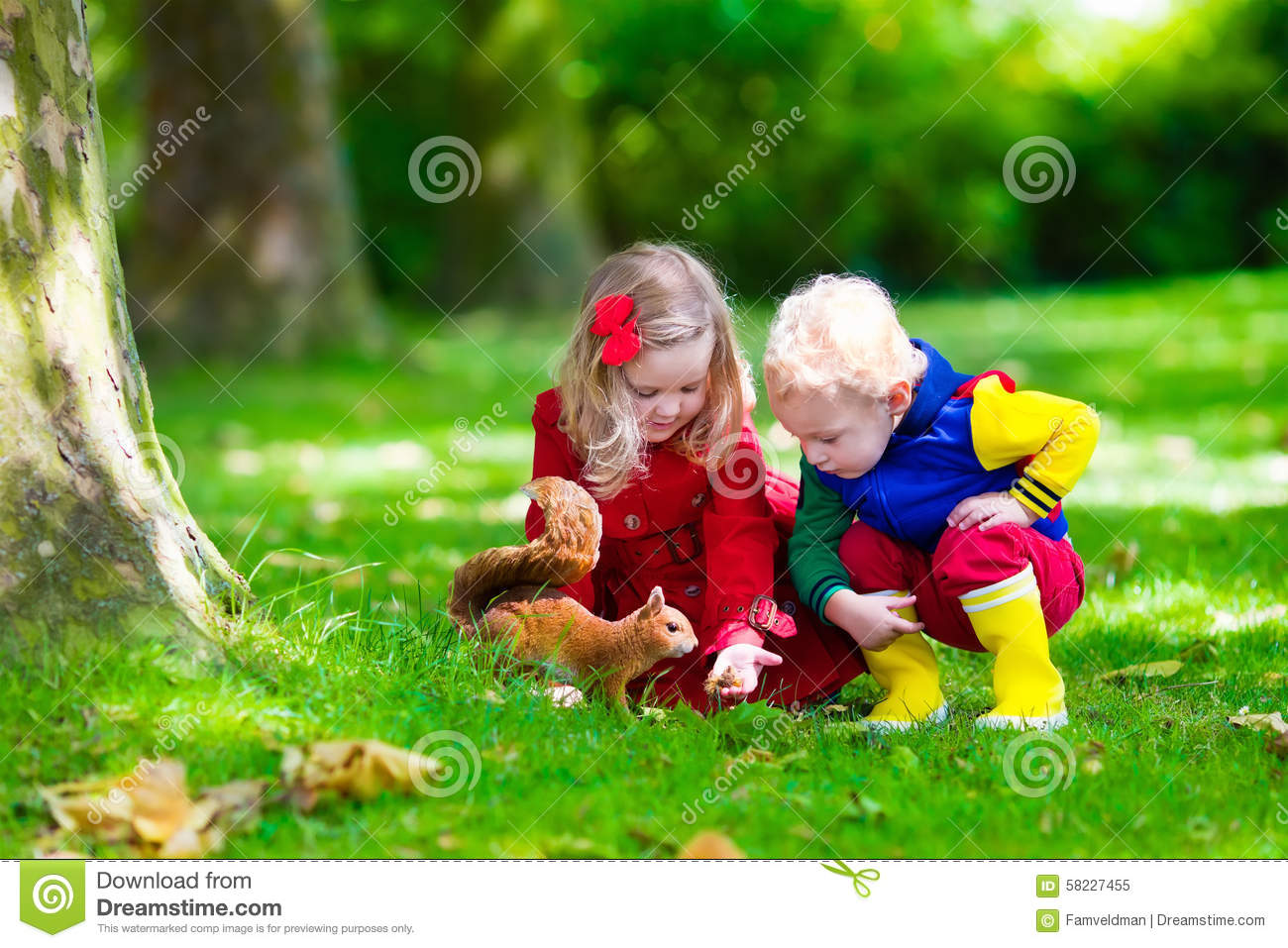 Kids Feeding Squirrel In Autumn Park Stock Photo Image