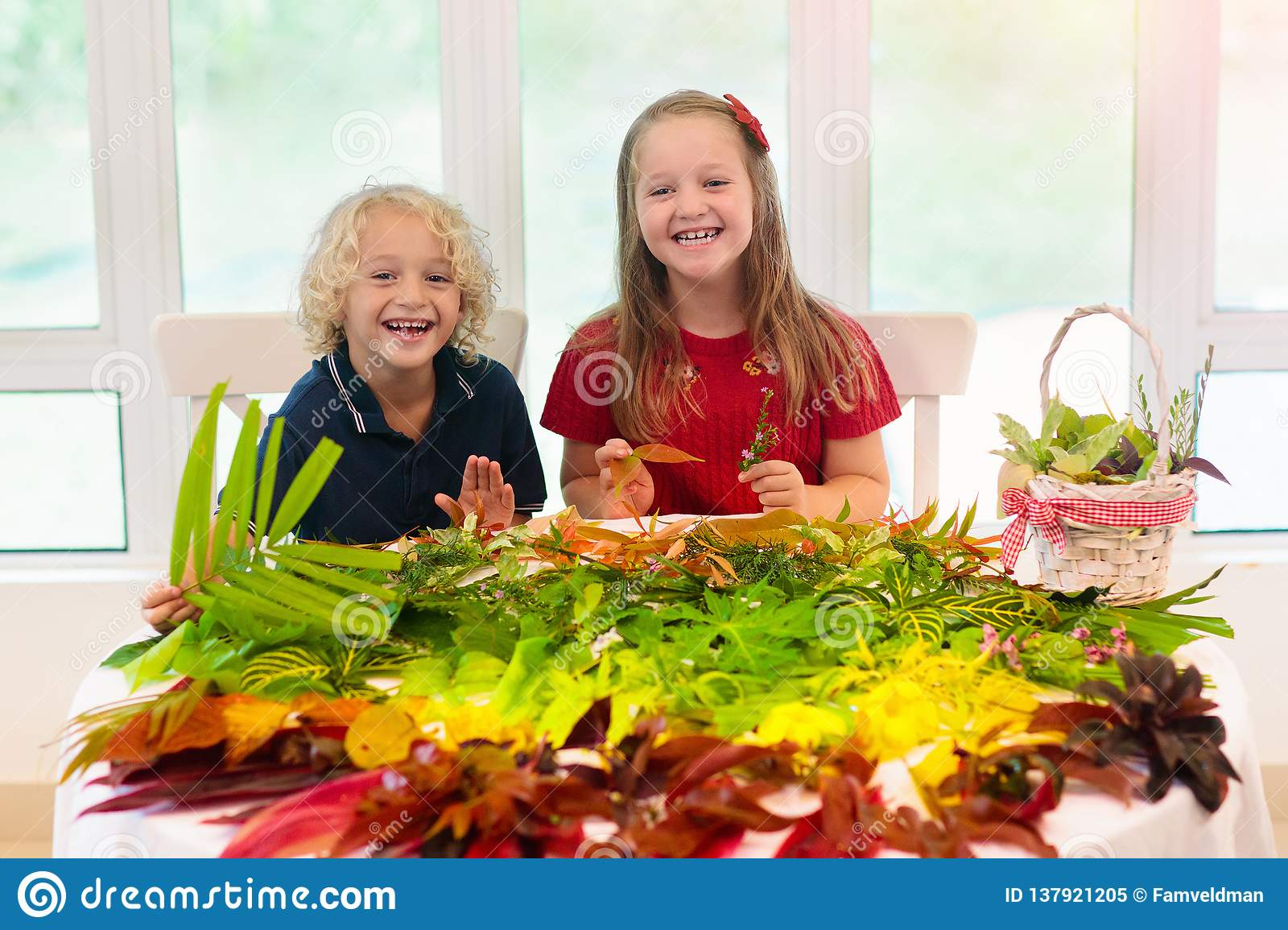 Kids pick colorful autumn leaves for school art