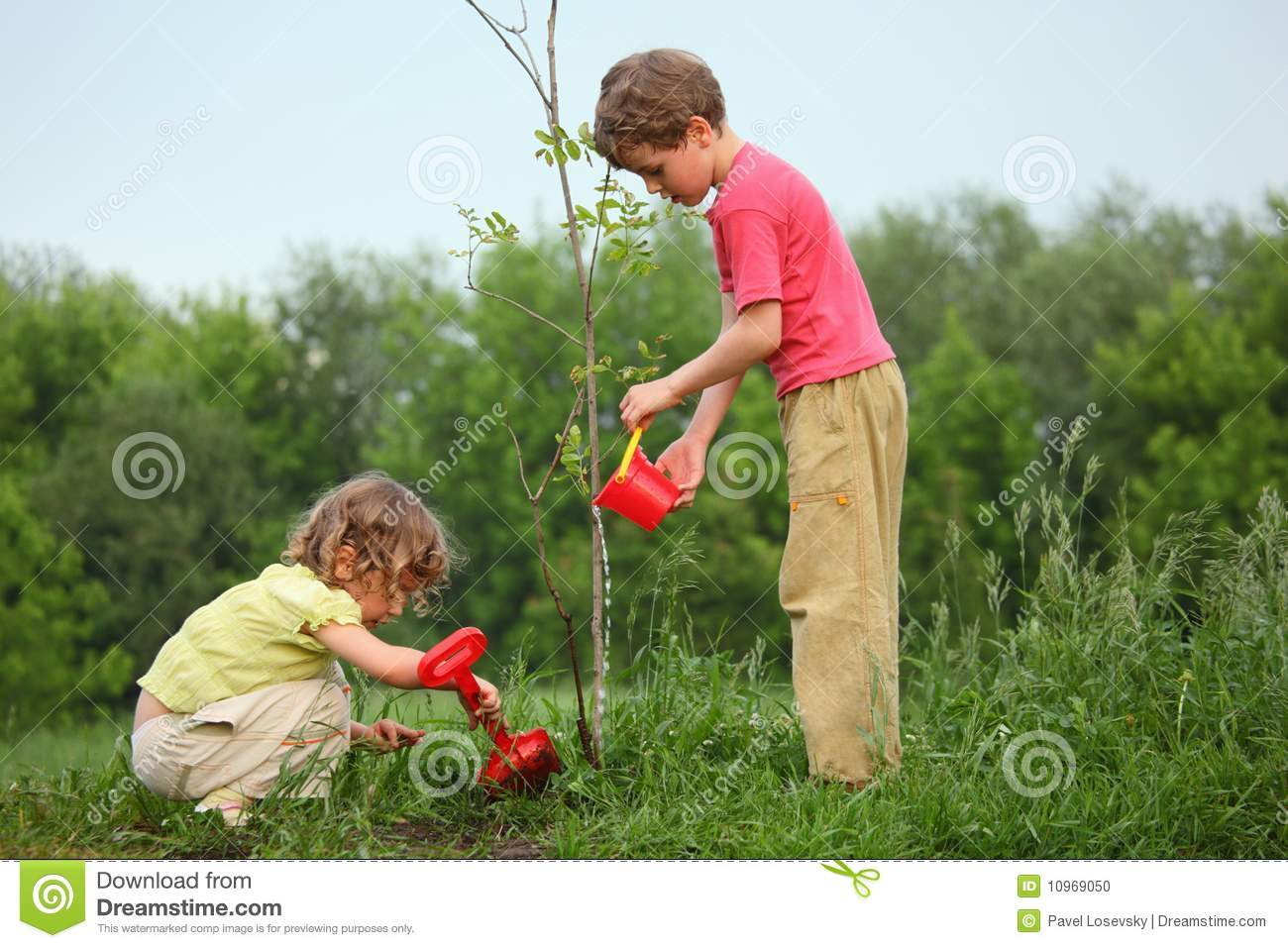Kids plant the tree stock photo. Image of plants, care ...