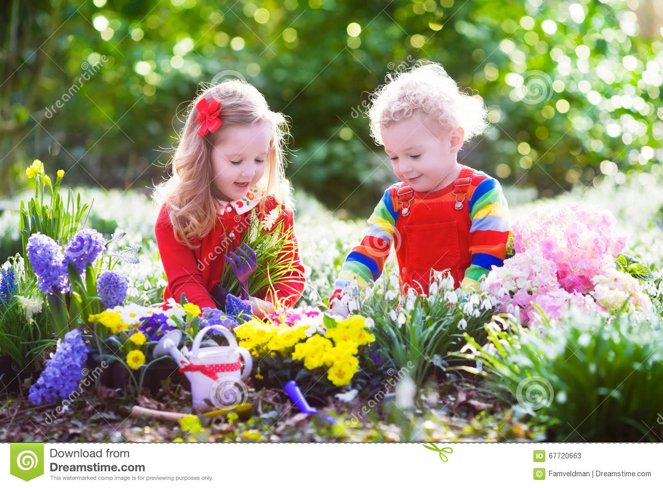 Kids Planting Flowers In Blooming Garden Stock Image Image Of