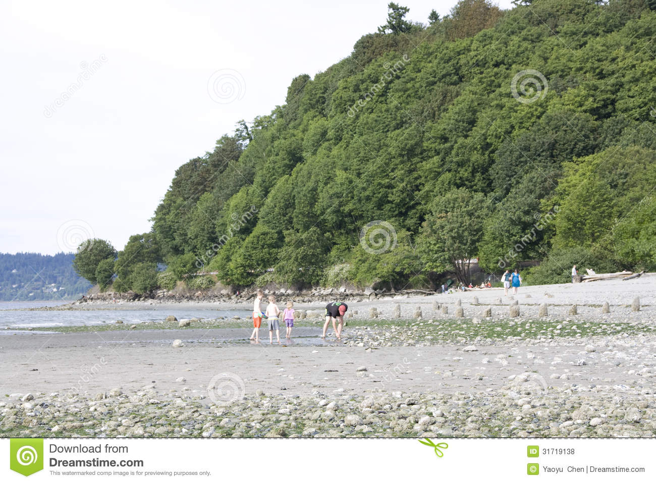 Kids Playing On Beach Editorial Stock Photo Image 31719138