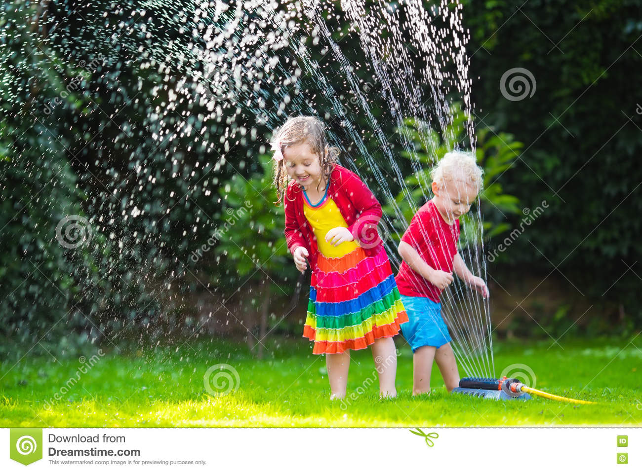 kids playing with garden sprinkler stock photo image 72311862