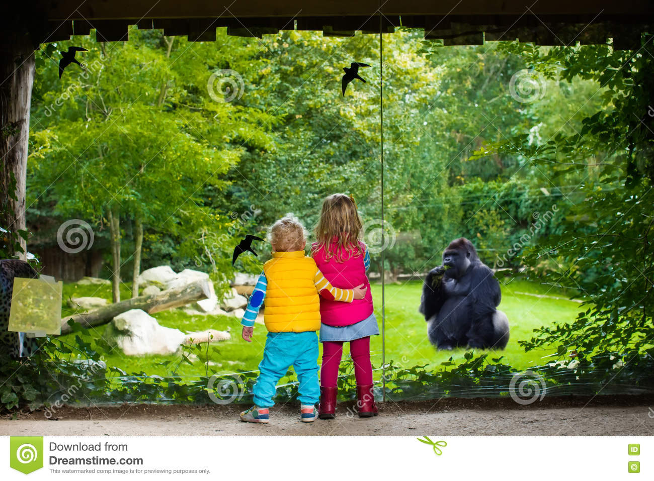 Kids watching animals in the zoo