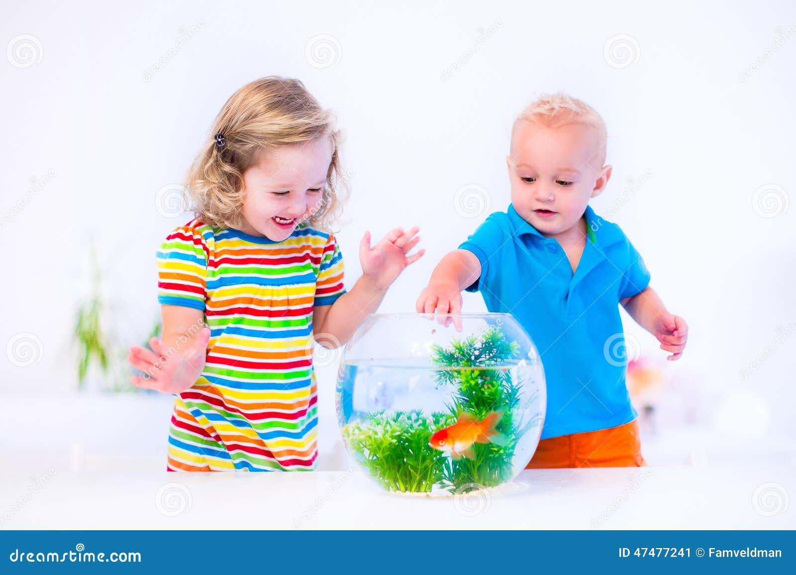 Kids watching fish bowl stock photo image 47477241 for Take me fishing org