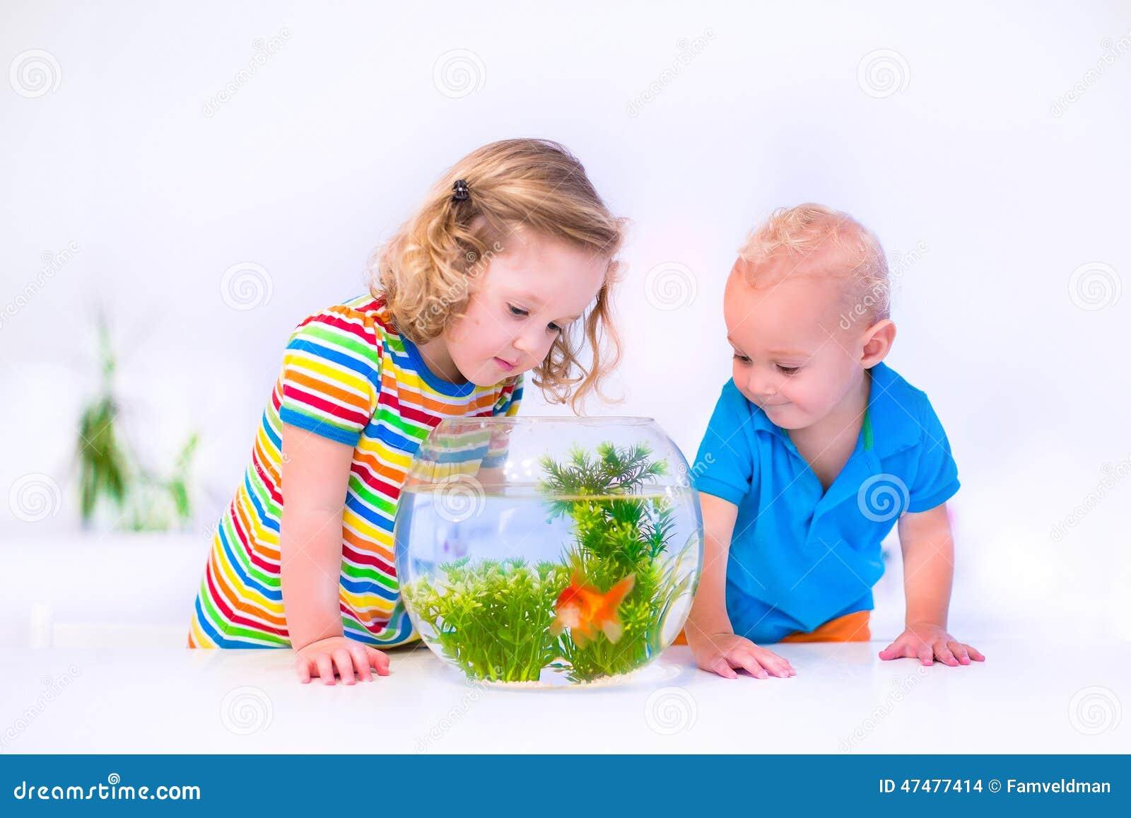 Kids watching fish bowl stock photo image 47477414 for Toddler fish tank