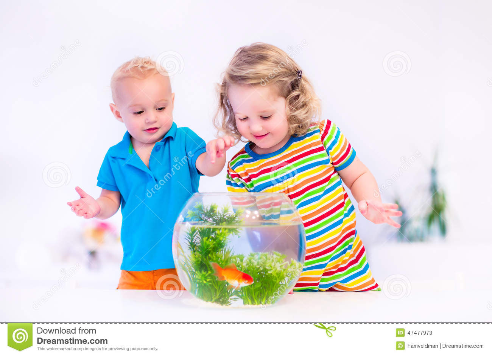 Kids Watching Fish Bowl Stock Photo Image 47477973