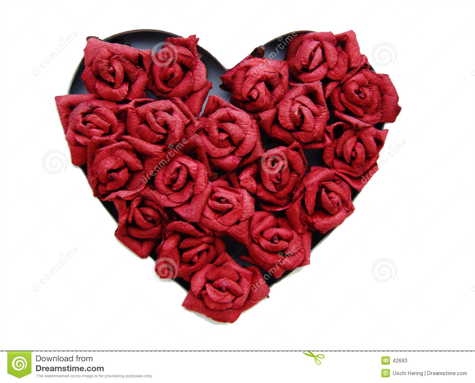 Kierowe róże