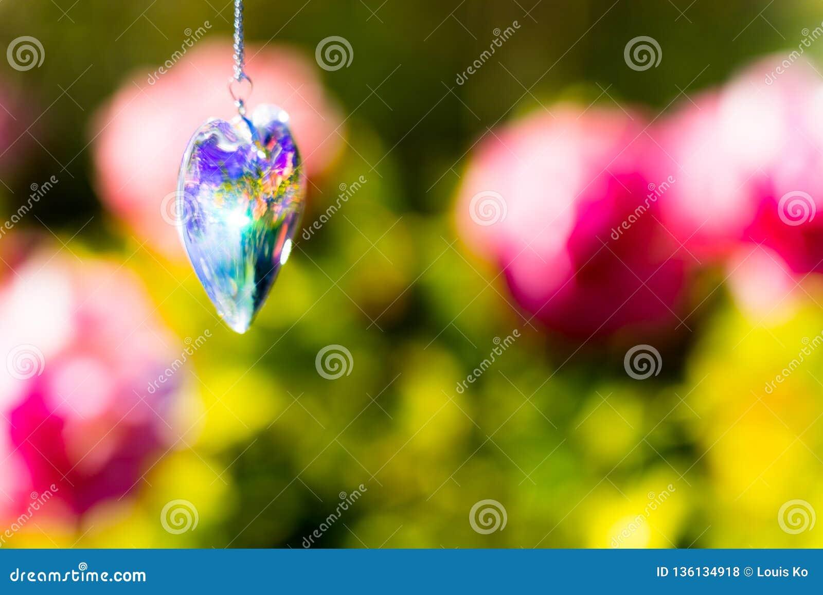 Kierowy krystaliczny szkło refract światło słoneczne - ogródu różanego tło