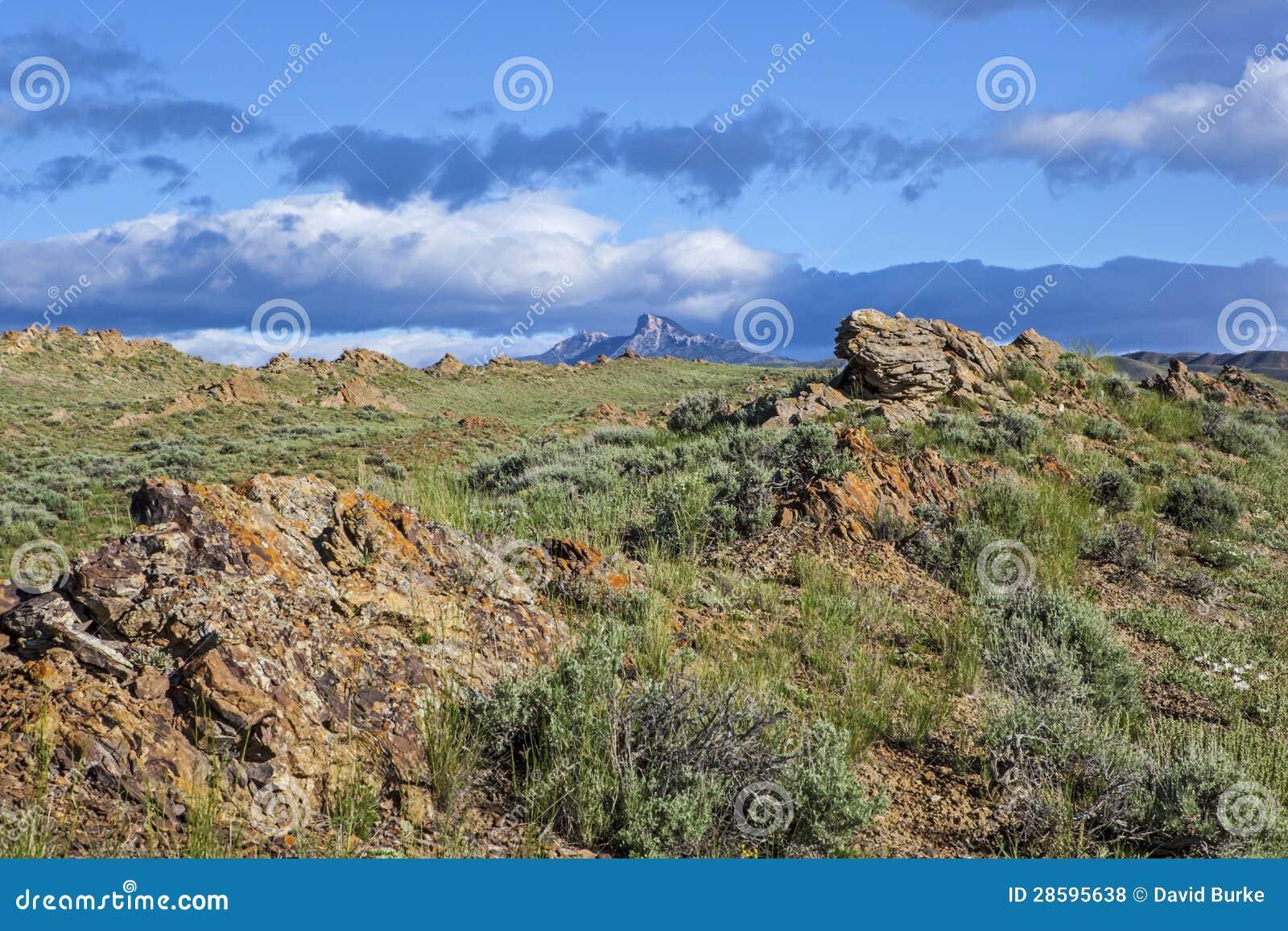 Kierowy widok górski
