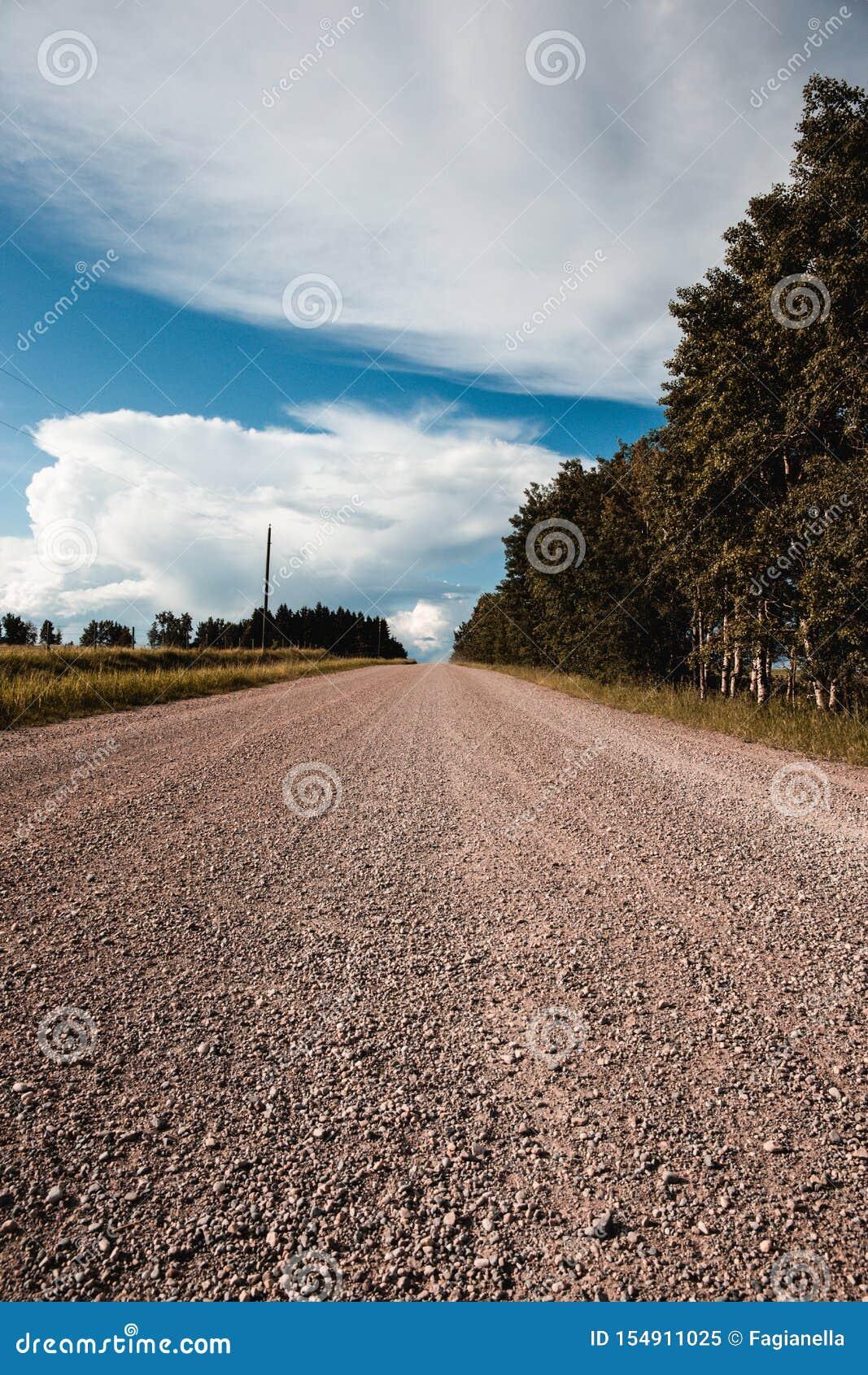 Kieskantenstraße im Rotwild-Land, Alberta, Kanada Herum verlassen, niemand, offenes Land