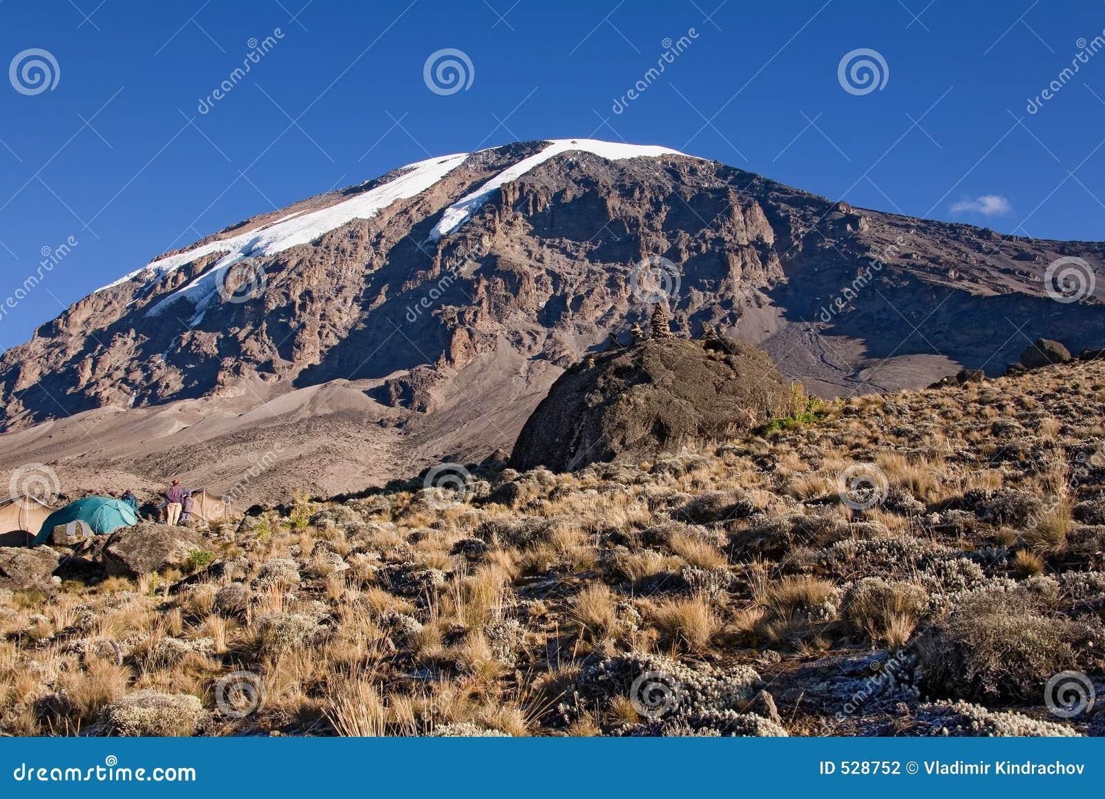 Kilimanjaro 021 karango camp
