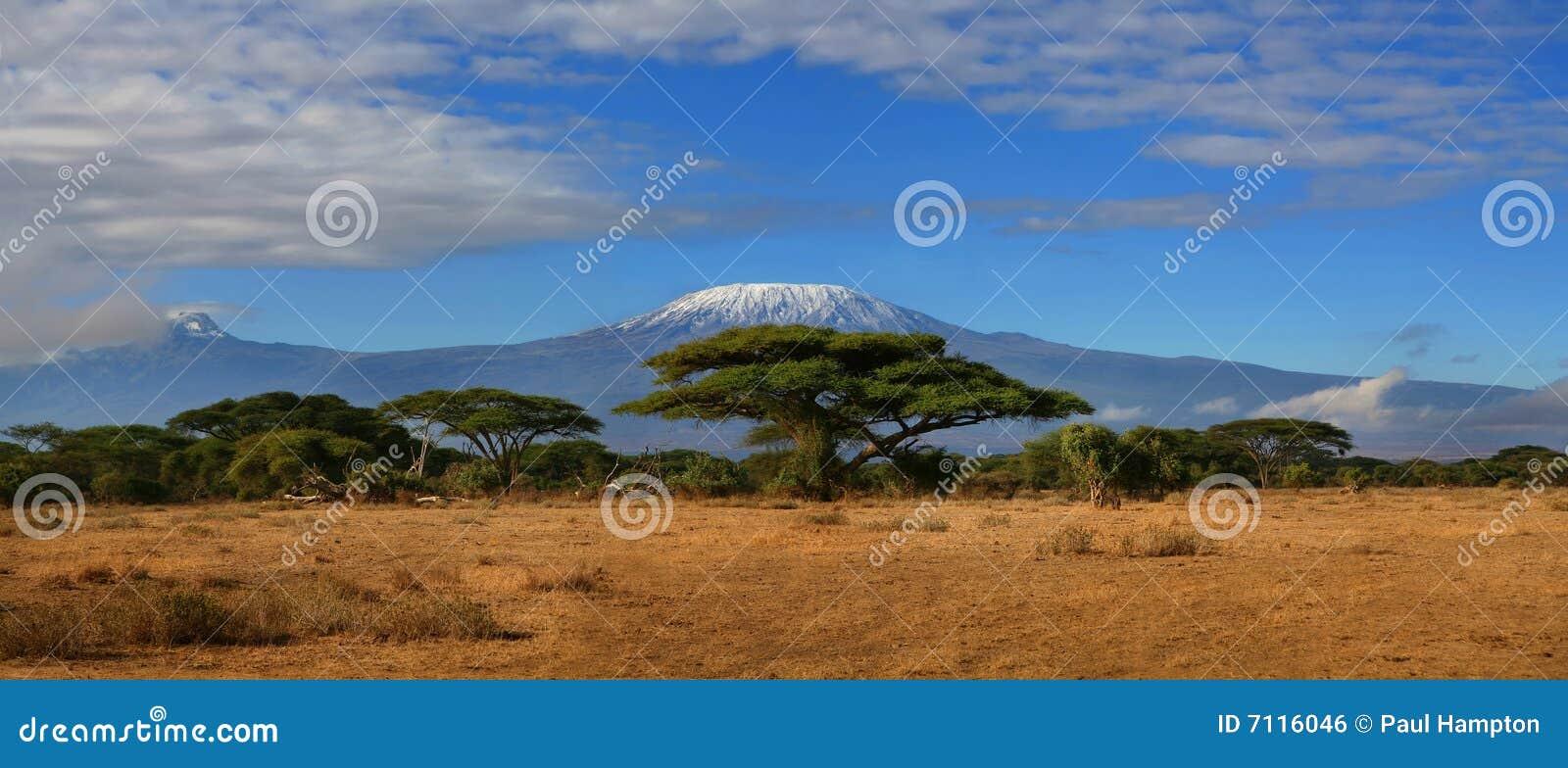 Kilimanjaro au loin