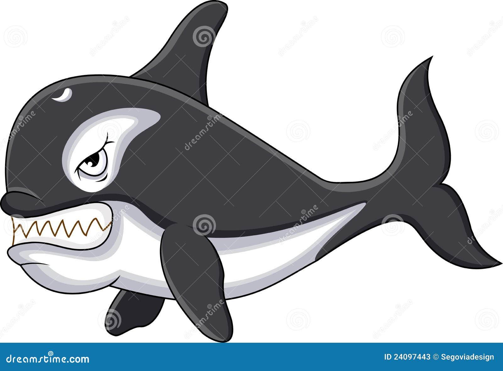 Killer Whale Ca... Orca Whale Cartoon