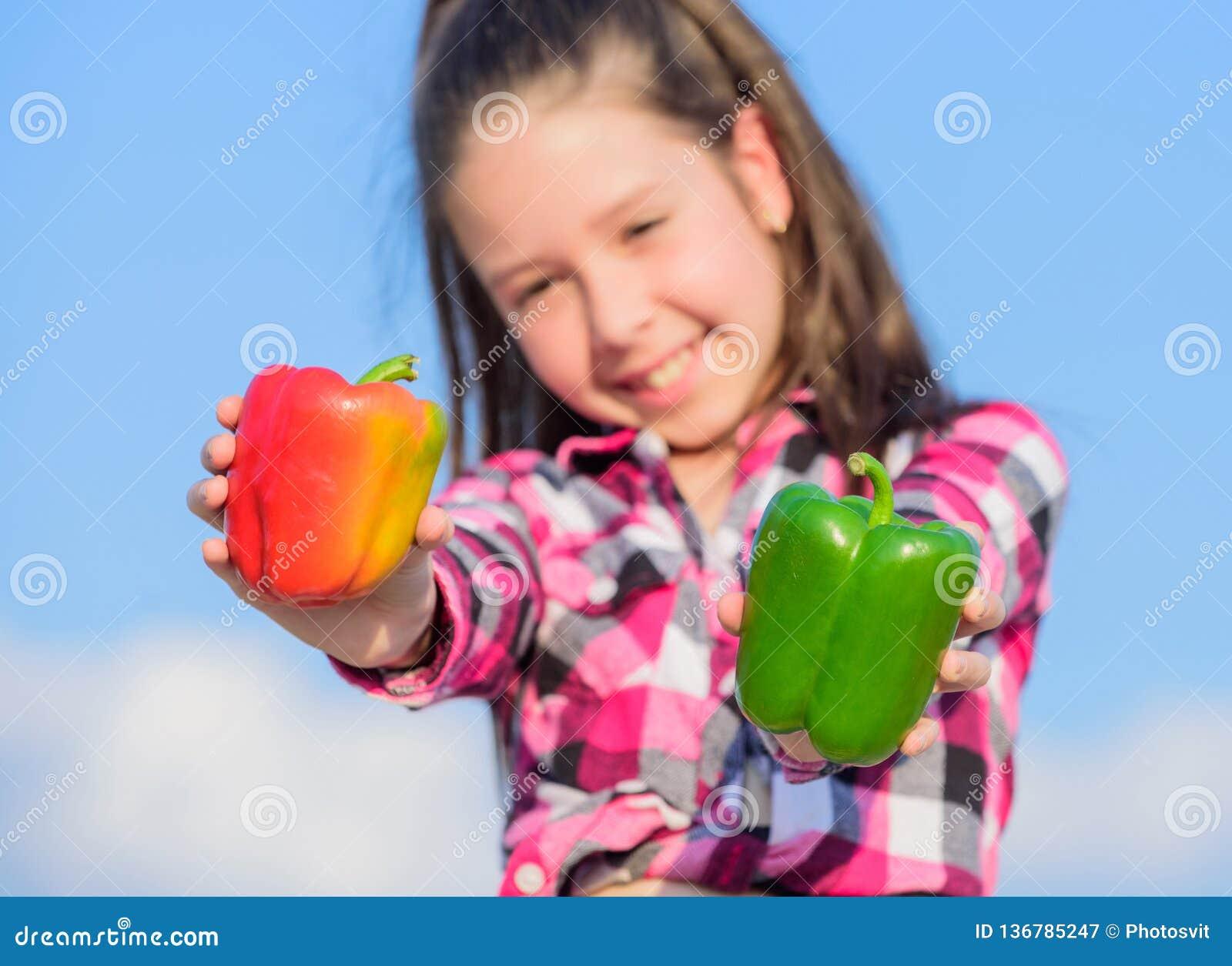 Kind dat van de de peperoogst van de jong geitjegreep het rijpe soorten peper voorstelt De inlandse groenten van de dalingsoogst
