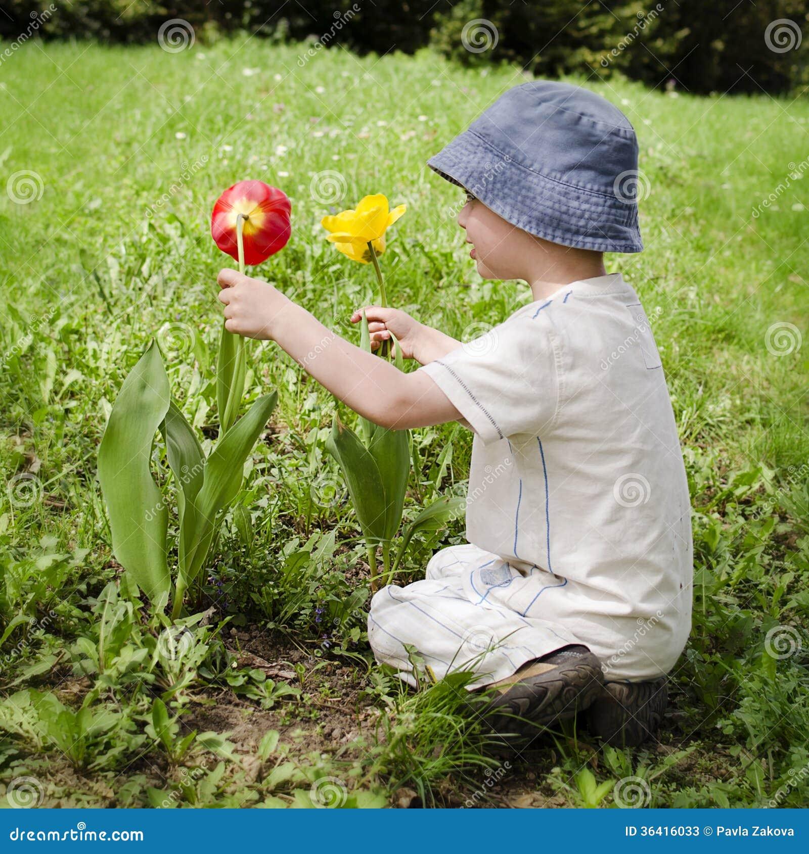 Kind In Tuin Met Tulpen Stock Foto u0026#39;s   Afbeelding  36416033