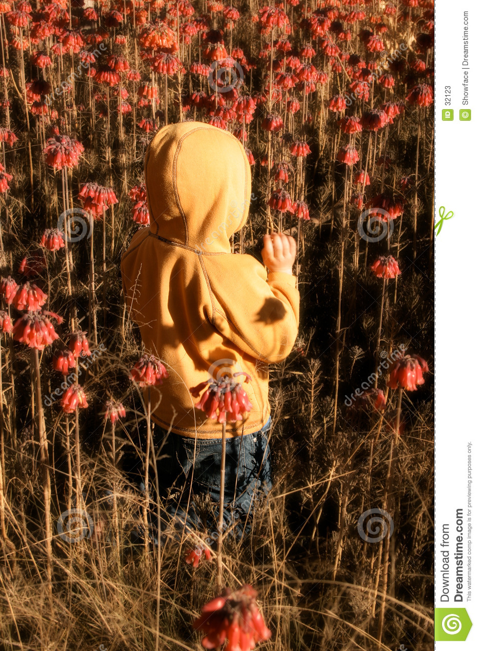 Kind in wildflowers