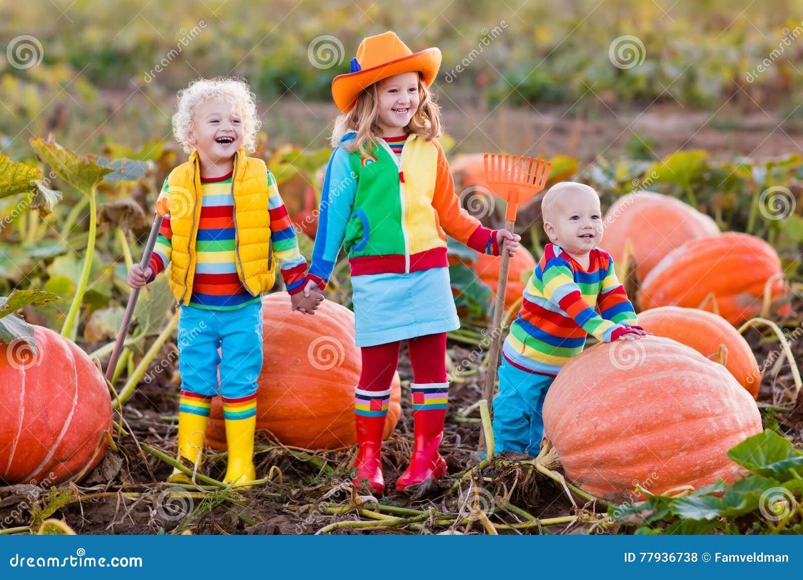 Kinder, die Kürbise auf Halloween-Kürbisflecken auswählen