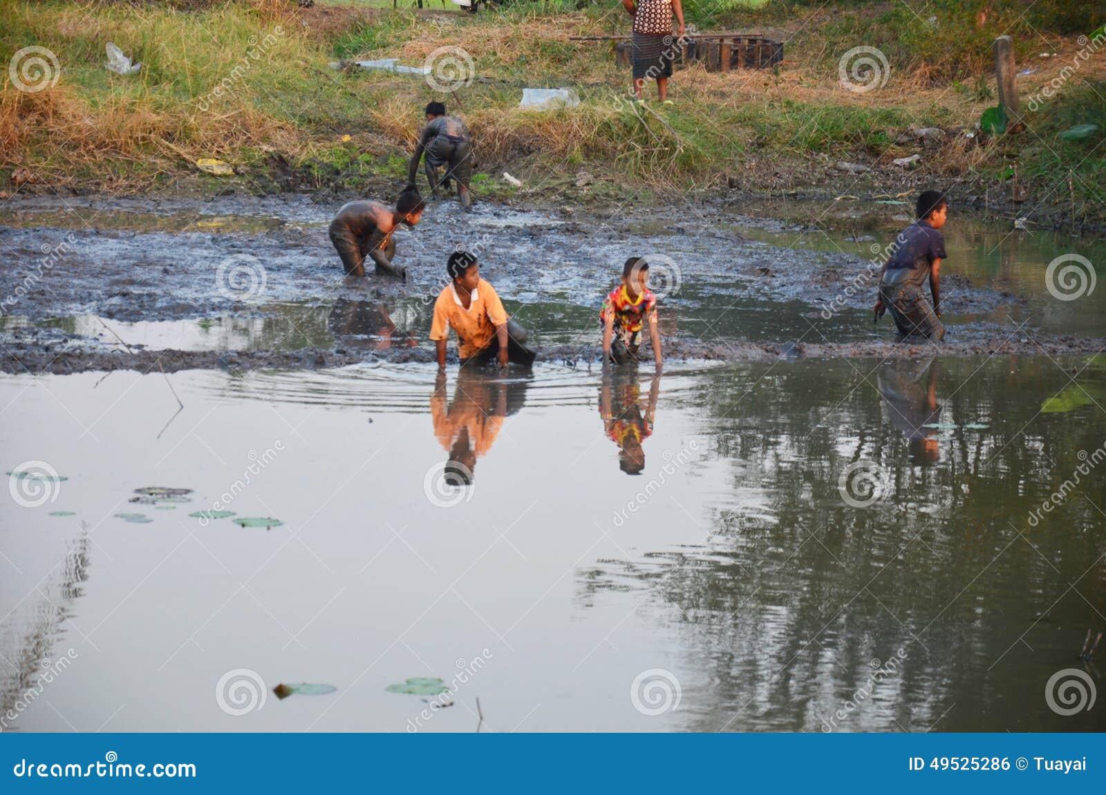 Kinder fangen fische im schlamm von teich an der for Fische in teich