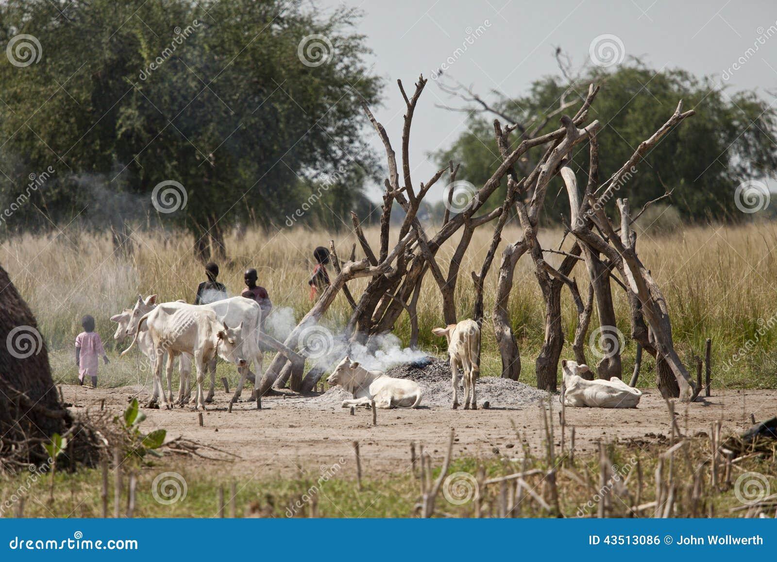 Kinder und Vieh in Süd-Sudan