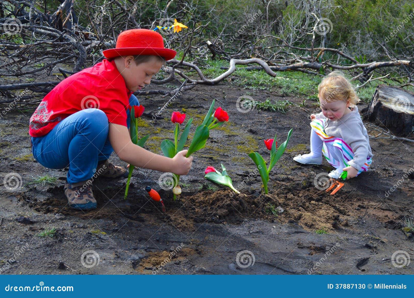 Kinderen die tulpen over gebrande grond planten