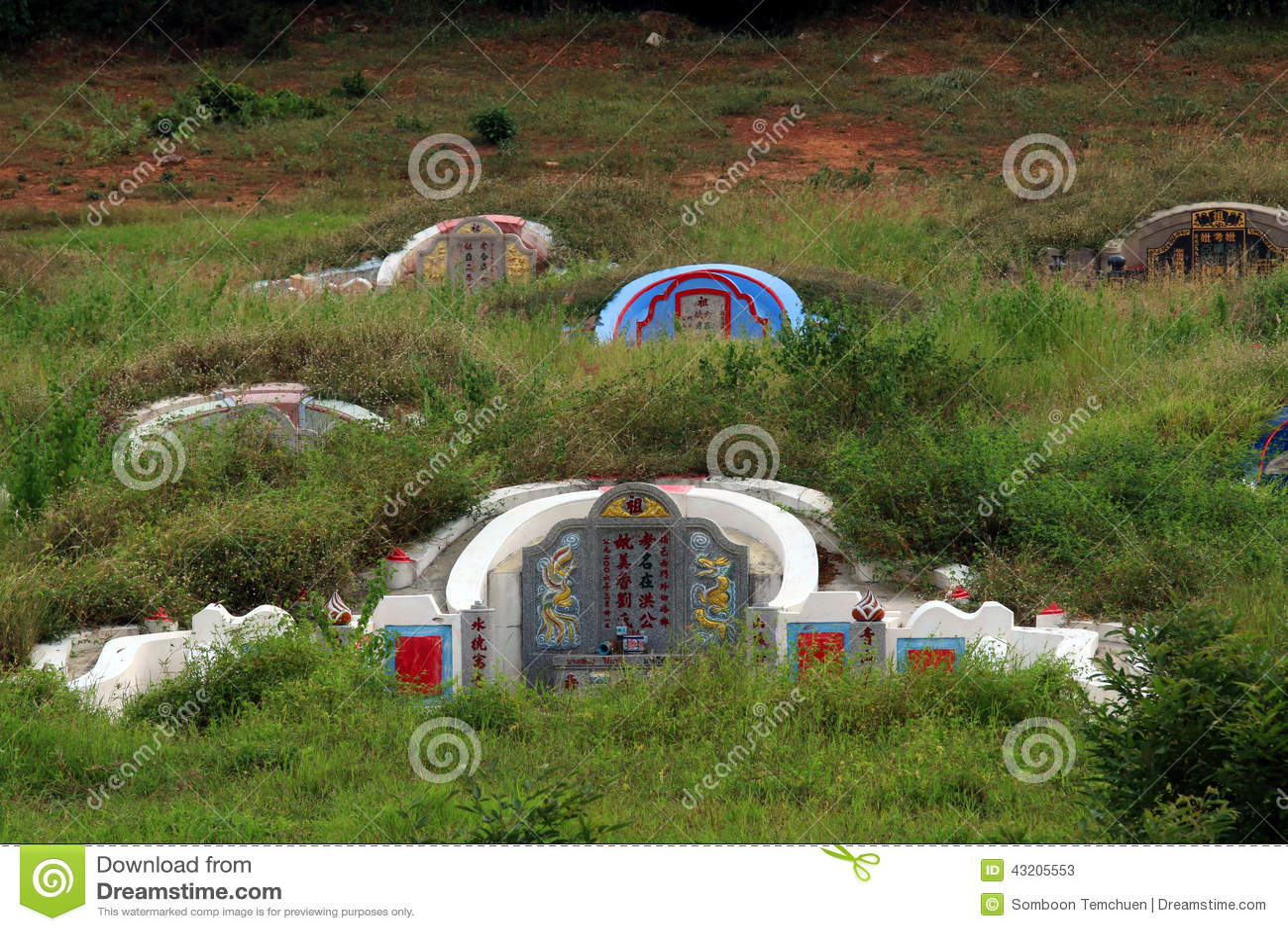 Download Kinesisk kyrkogård fotografering för bildbyråer. Bild av växt - 43205553