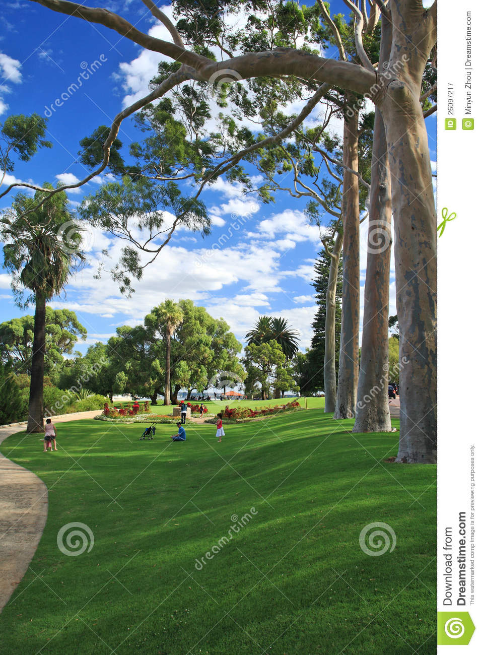 King's Park In Perth, Western Australia Editorial Photography