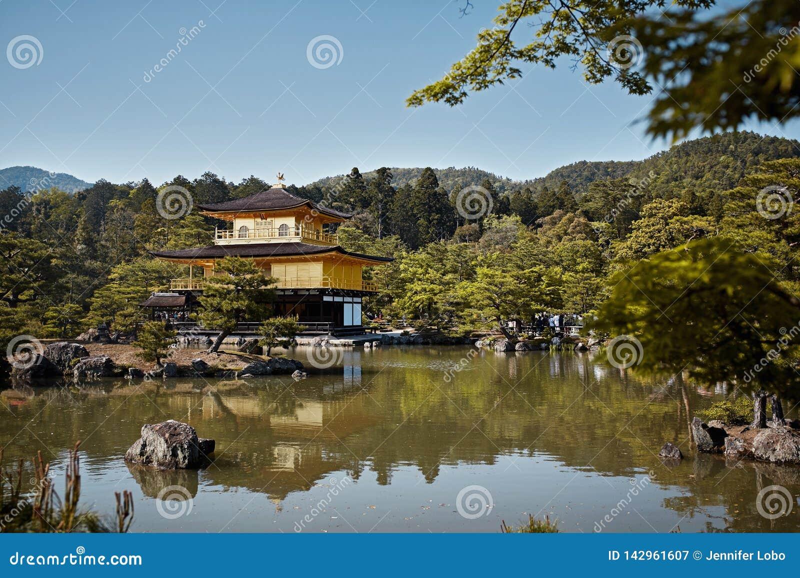 Kinkaku-Ji świątynia otaczająca lasem