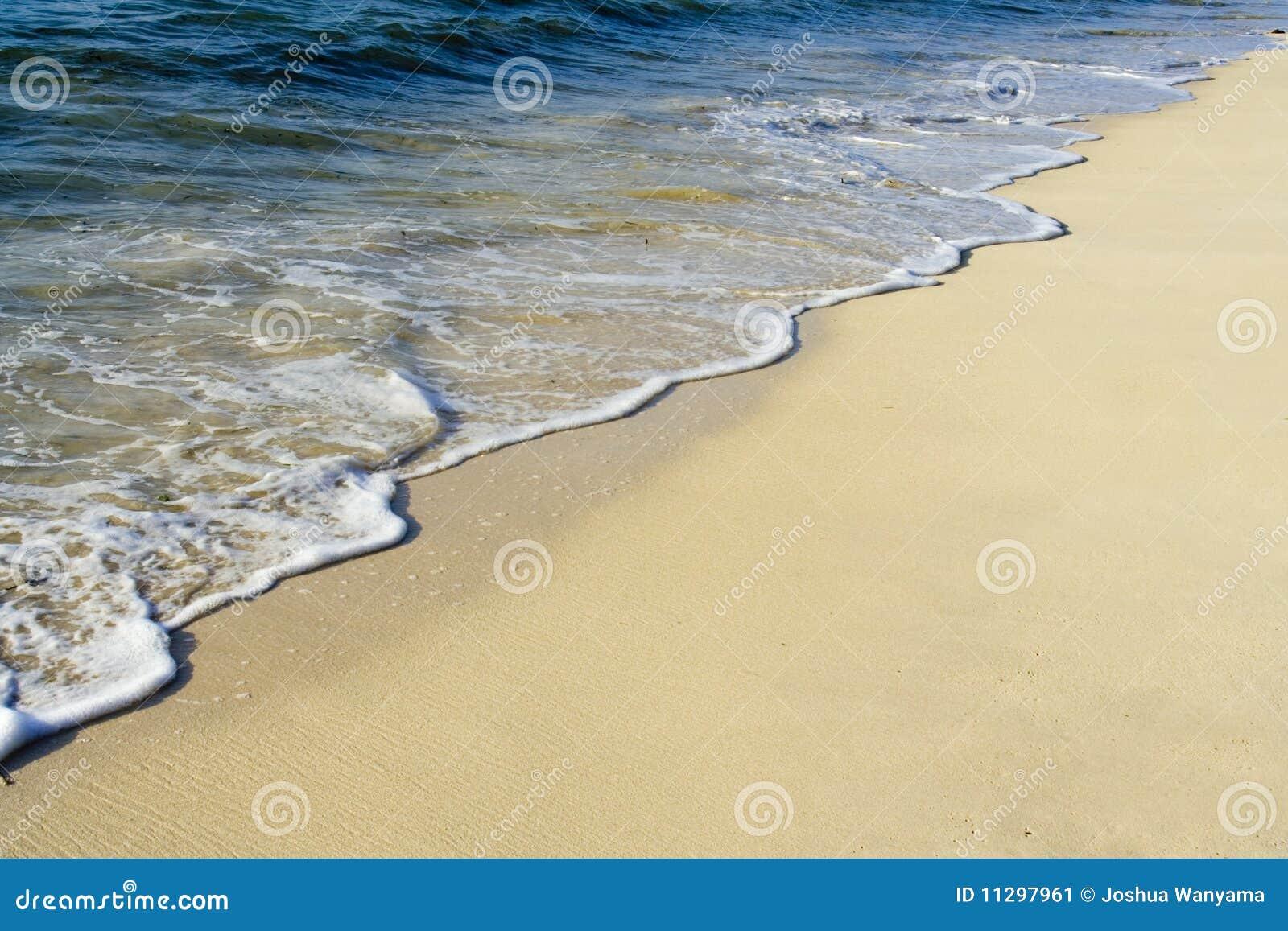 Kipiel na Tropikalnej plaży