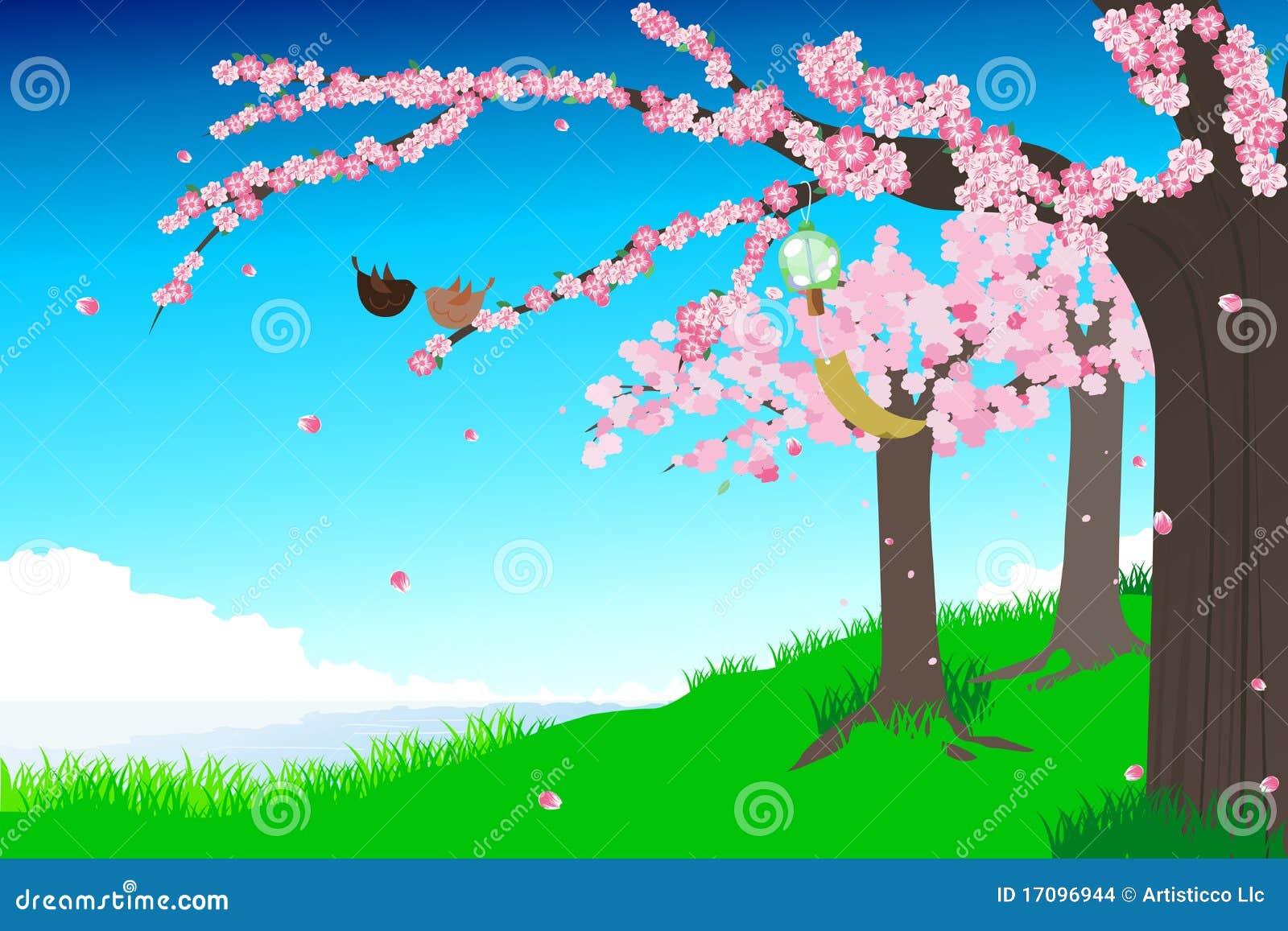 Kirschblütenabbildung