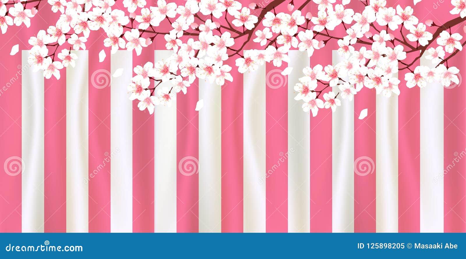 Kirschblütenillustration
