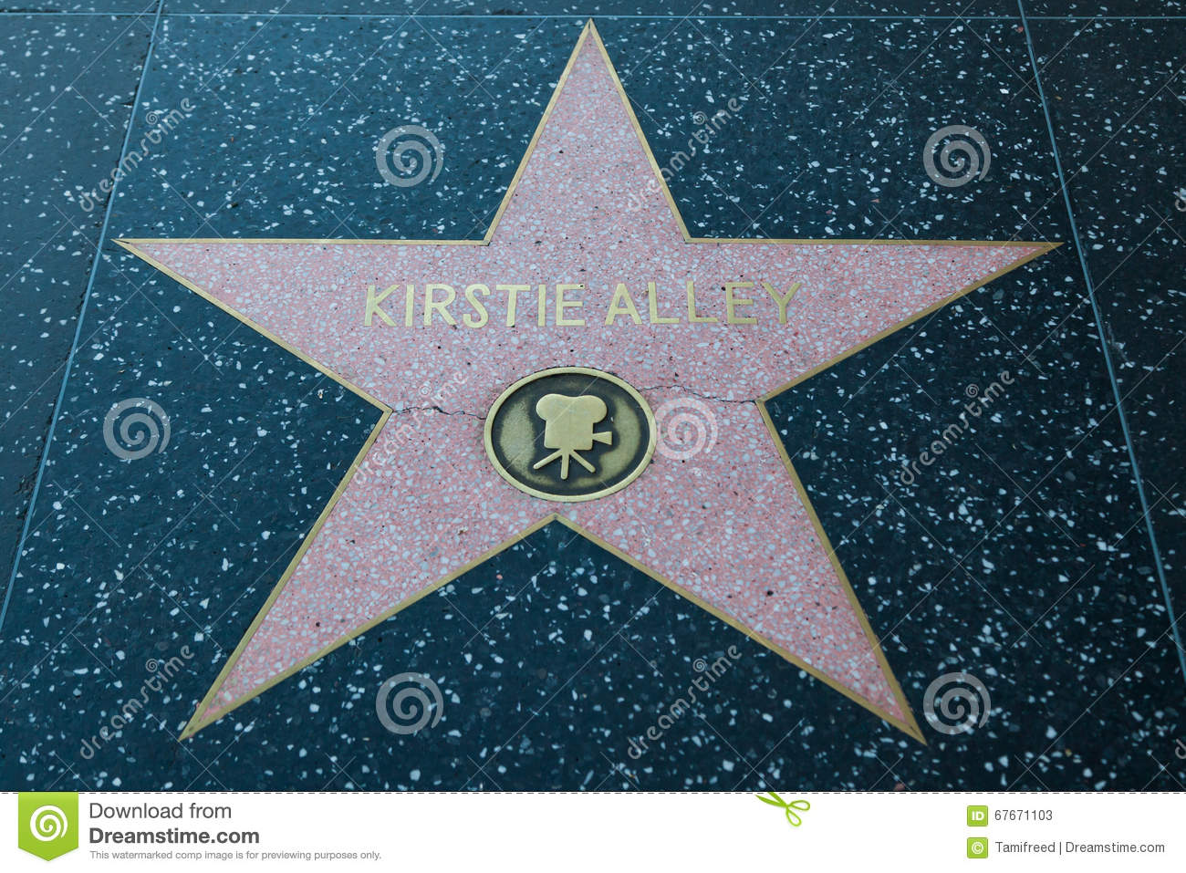 Kirstie Alley Hollywood Star