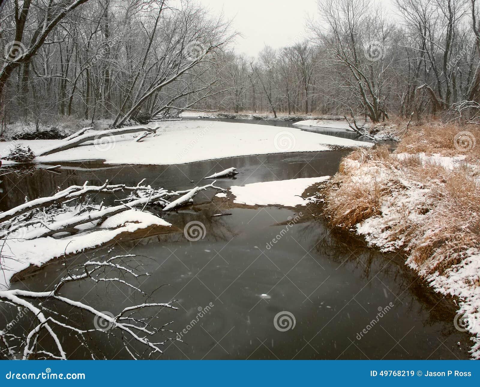 Kishwaukee zimy Rzeczny krajobraz Illinois