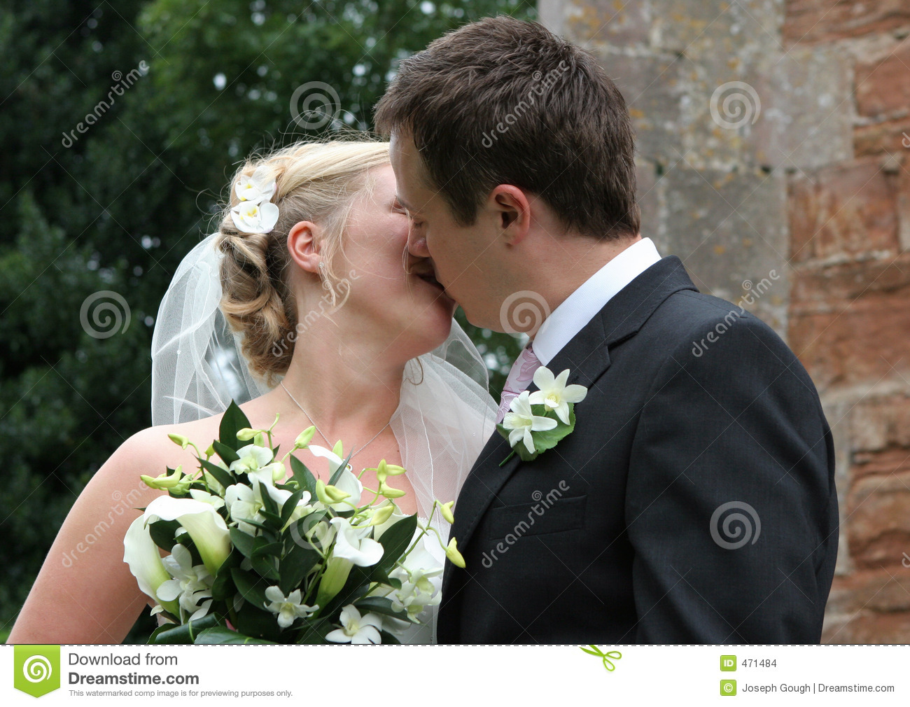 Download The Kiss stock photo. Image of suit, wedding, groom, blond - 471484