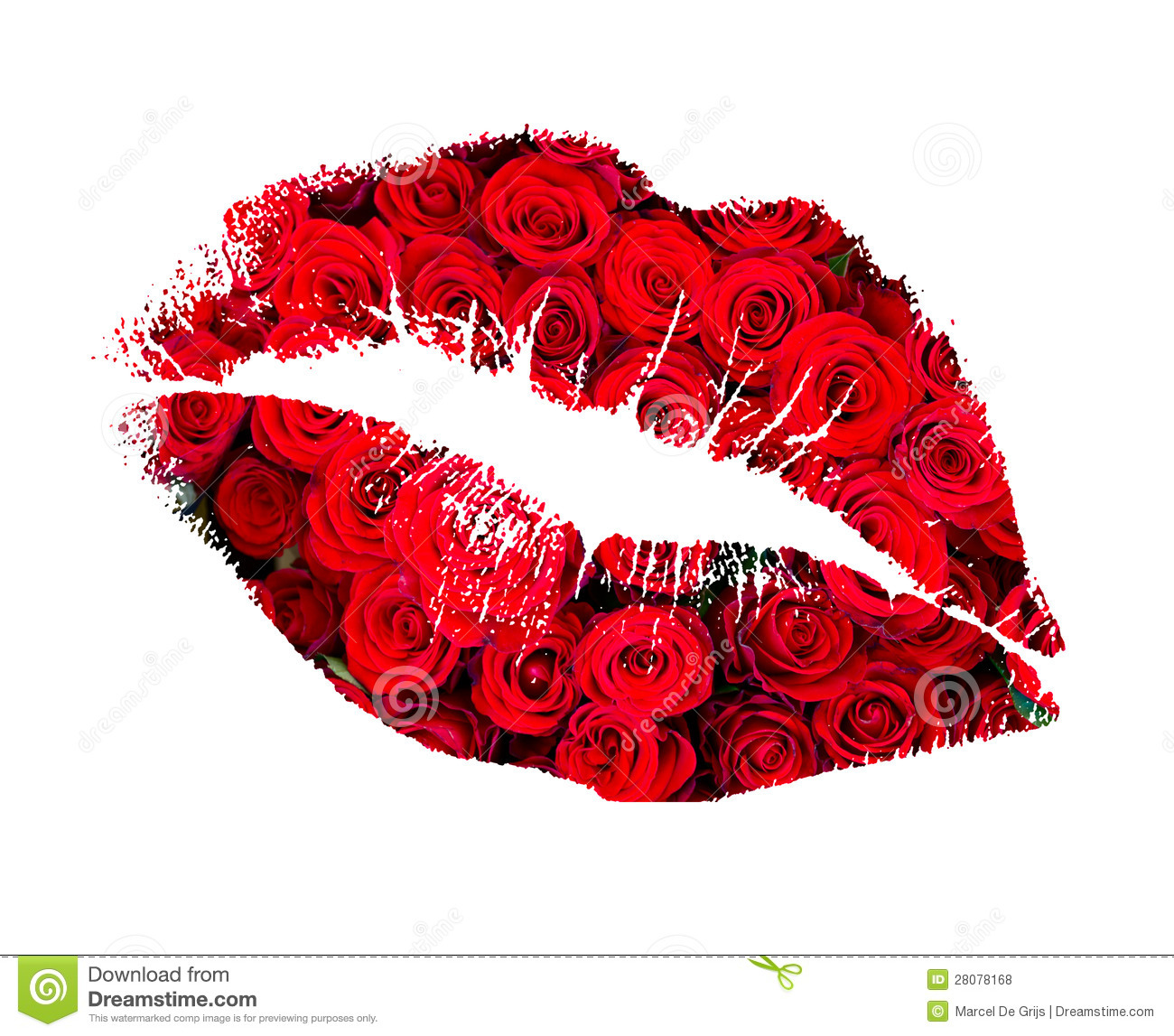 Kiss from a rose royalty free stock photos image 28078168