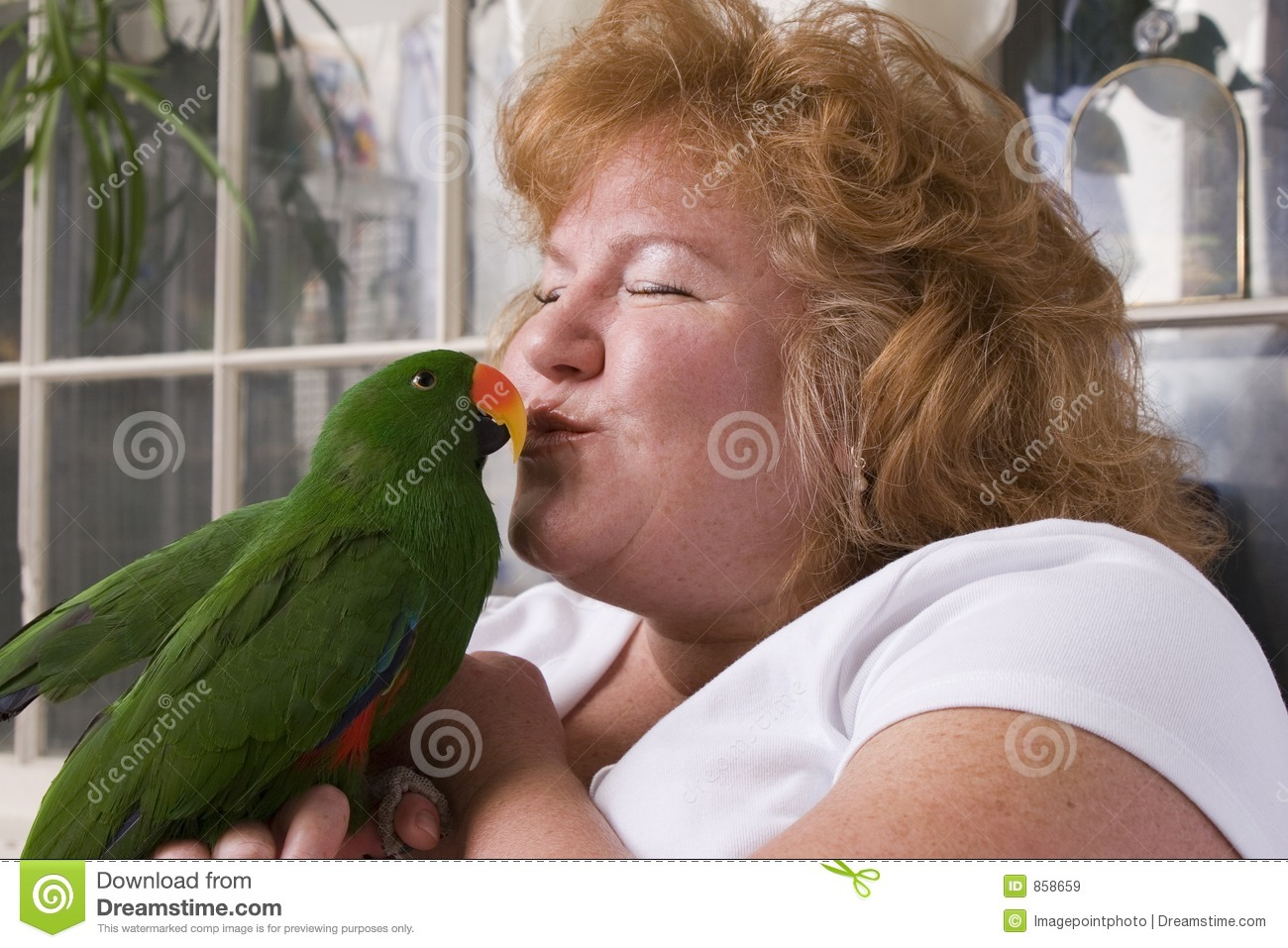 Download Kissing bird stock image. Image of feathers, male, owner - 858659