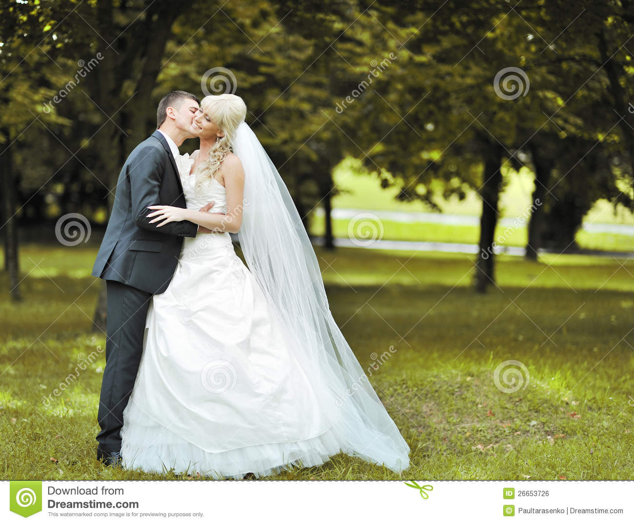 kissing wedding couple in a park royalty free stock image - image