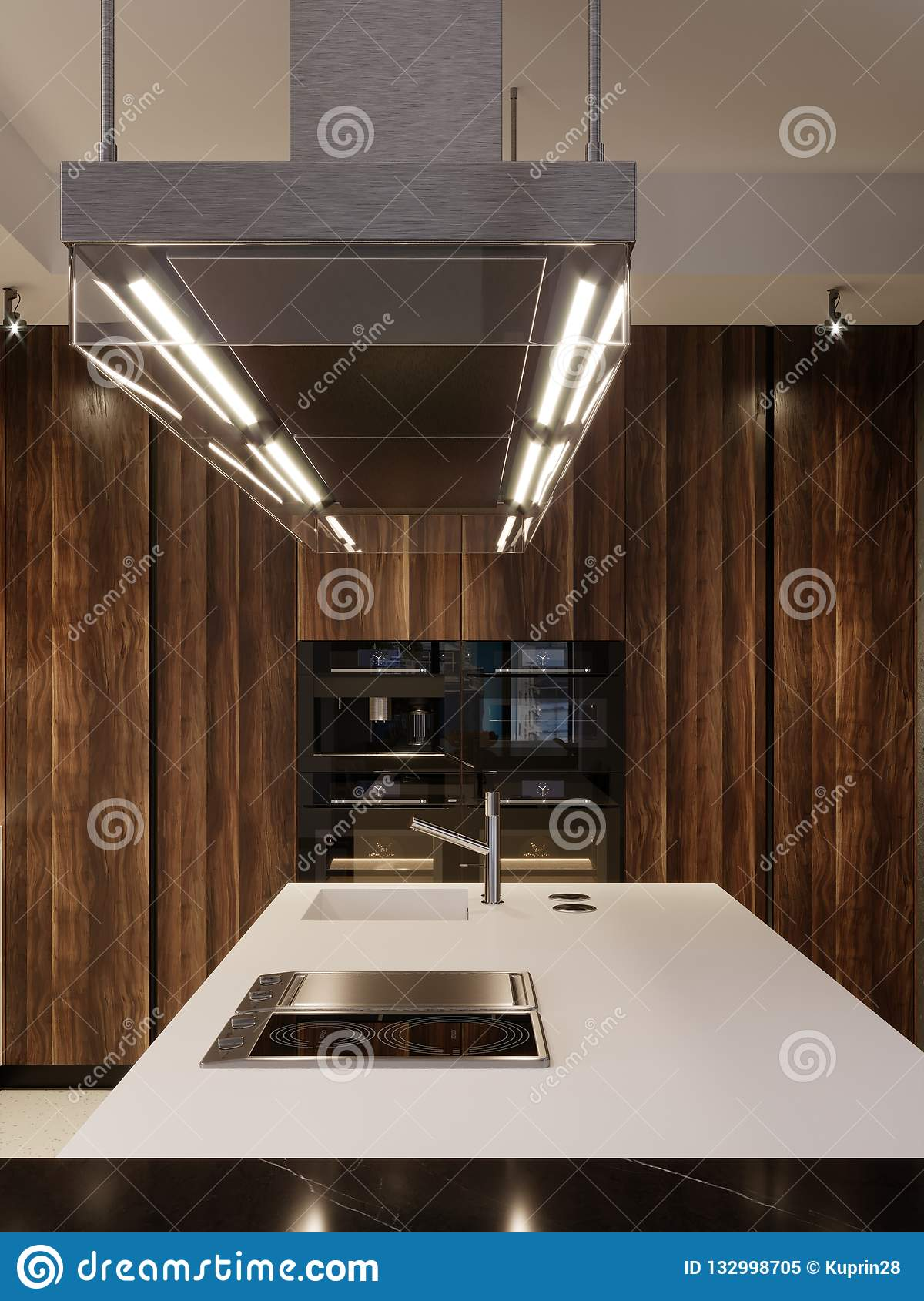 Kitchen Design Hood And Built In Kitchen Appliances In A Modern Kitchen Stock Illustration Illustration Of Contemporary Indoors 132998705