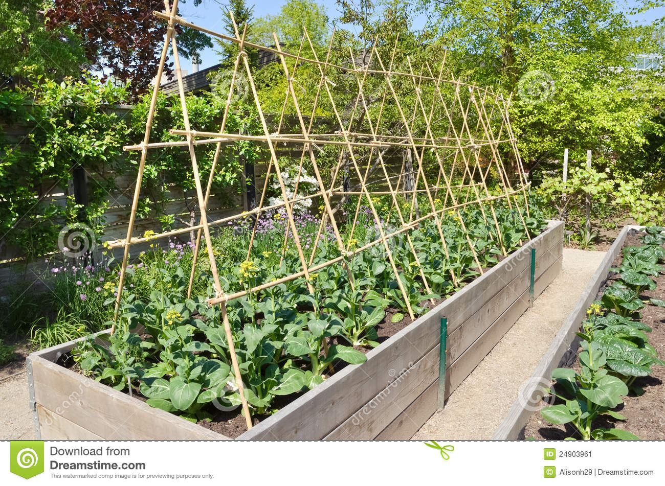 Great Royalty Free Stock Photo. Download Kitchen Garden ...
